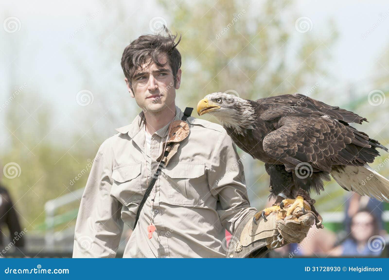 Φαλακρός αετός στο βραχίονα εκπαιδευτών