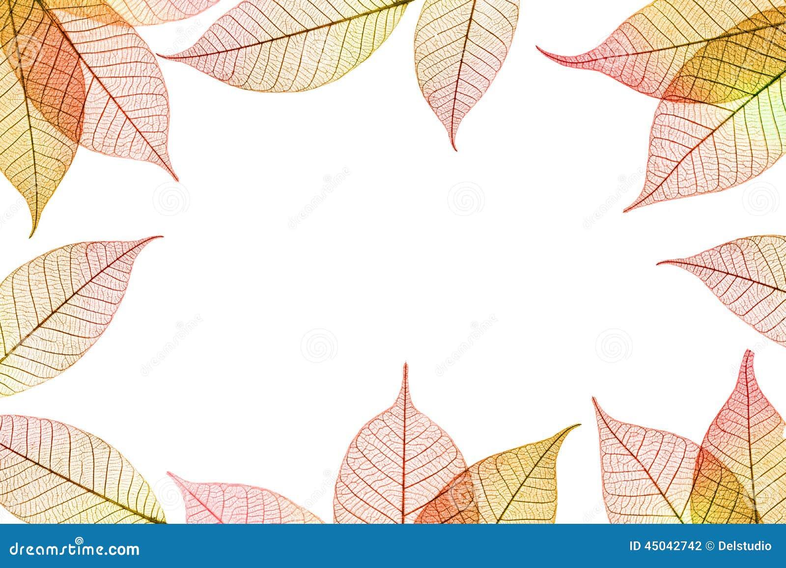 Φθινοπωρινή σύνθεση πλαισίων φύλλων
