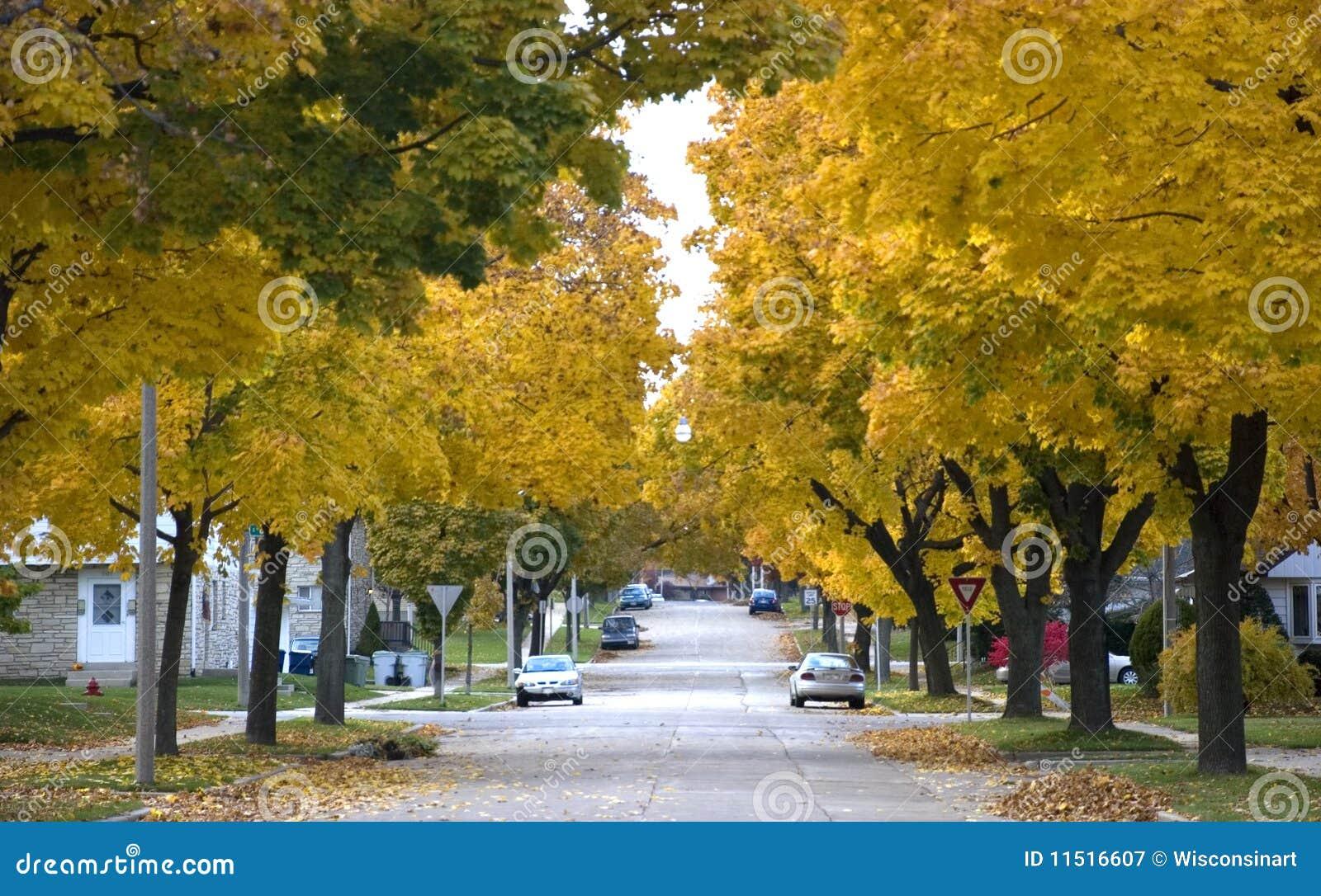 Φθινόπωρο στην πόλη,  Οικίαες, σπίτια, γειτονιά