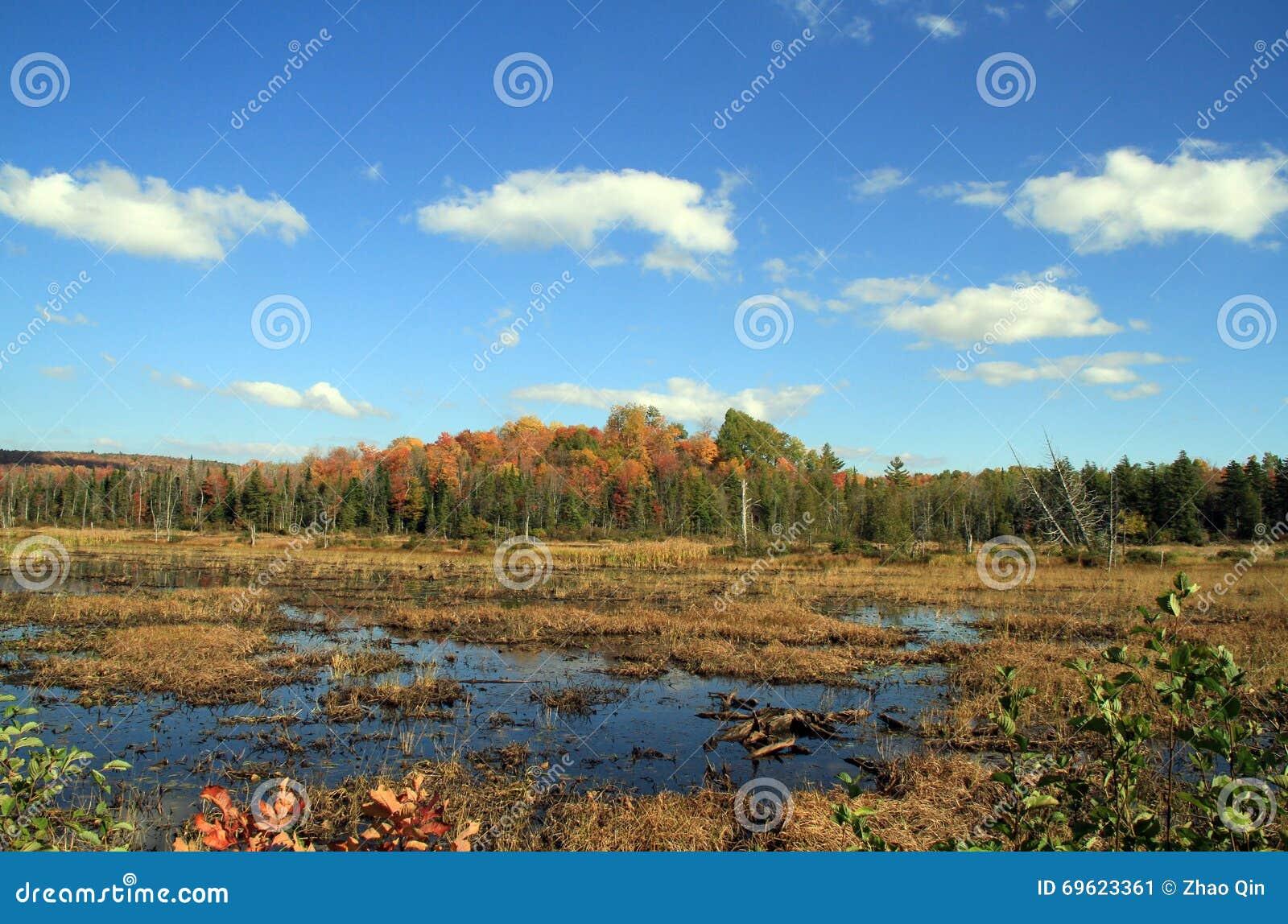 Φθινόπωρο στο πάρκο Adirondack