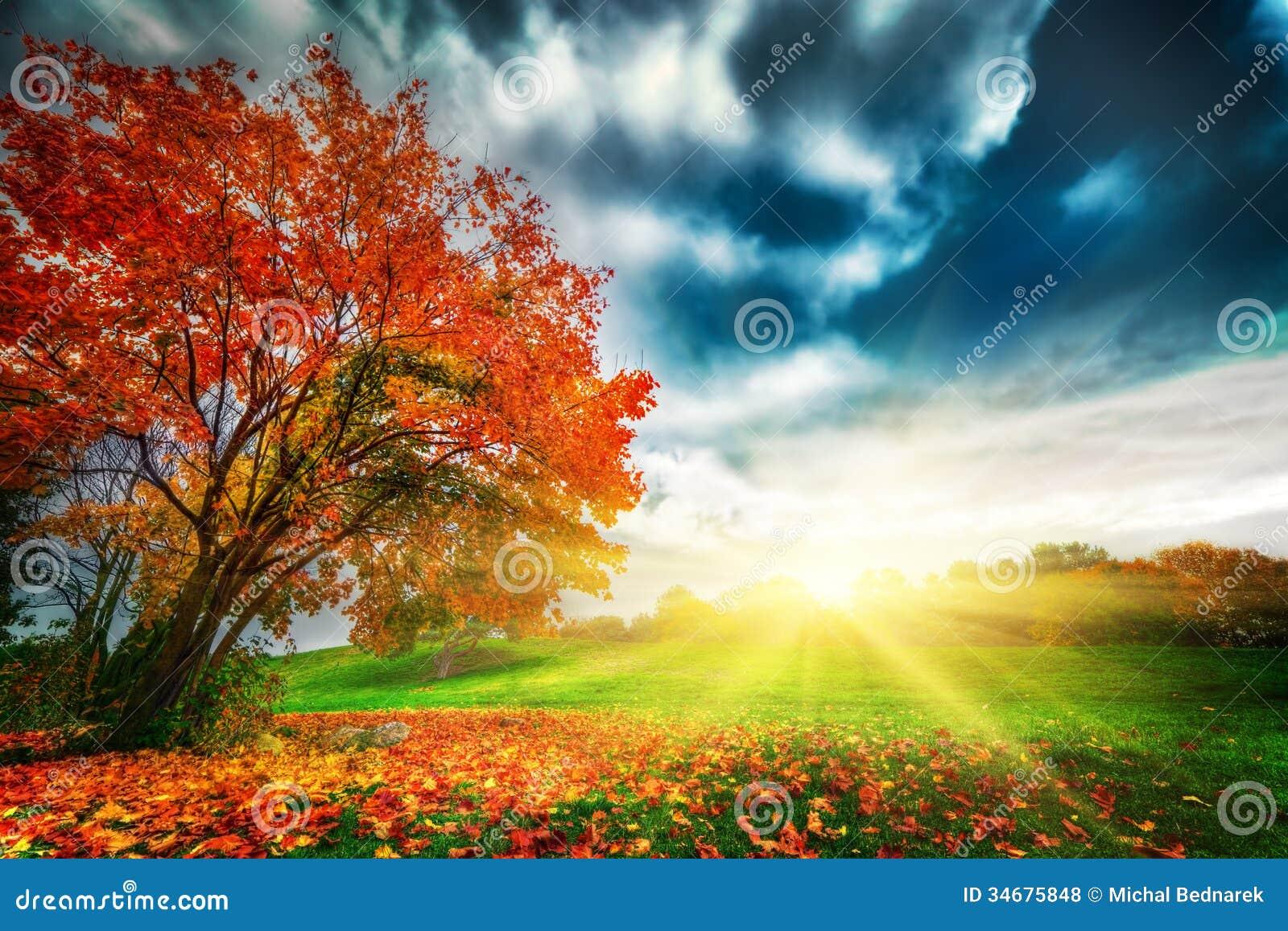 Φθινόπωρο, τοπίο πτώσης στο πάρκο