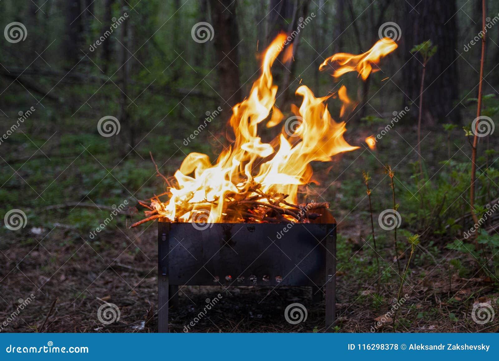 Φλόγα μιας πυρκαγιάς σε μια σχάρα σε ένα πράσινο δάσος
