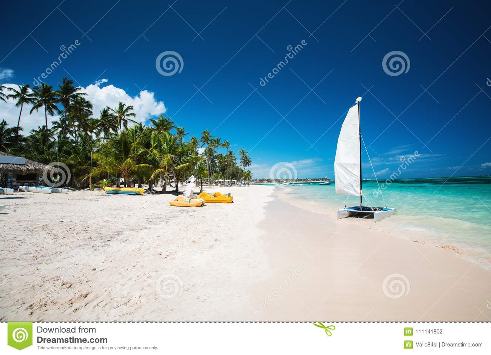 Φοίνικας και τροπική παραλία σε Punta Cana, Δομινικανή Δημοκρατία