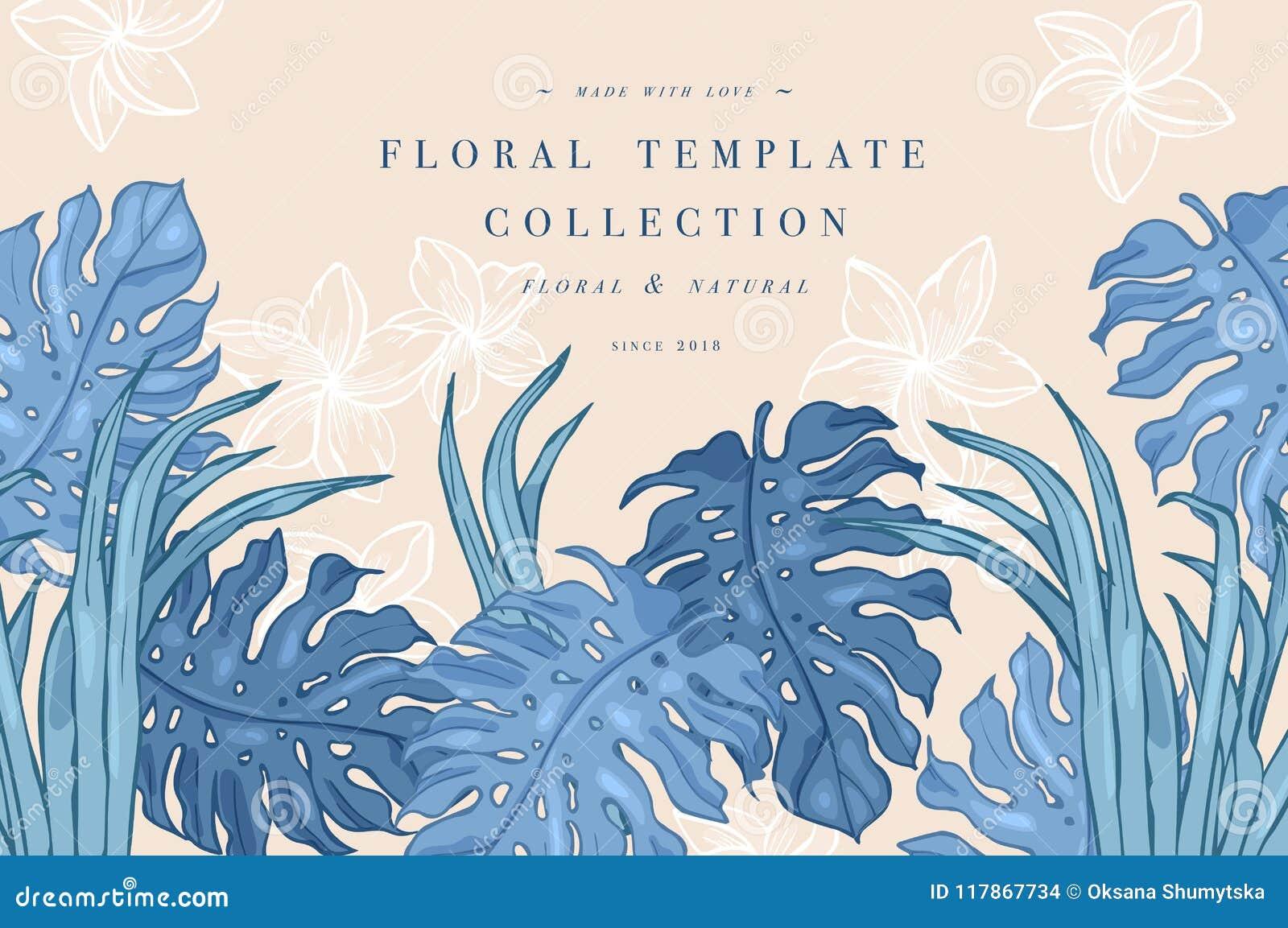 φοίνικας φύλλων τροπικός Υπόβαθρο σχεδίου ζουγκλών ή πρότυπο αφισών Διανυσματικά χαραγμένα απεικόνιση φύλλα ζουγκλών ζωηρόχρωμος