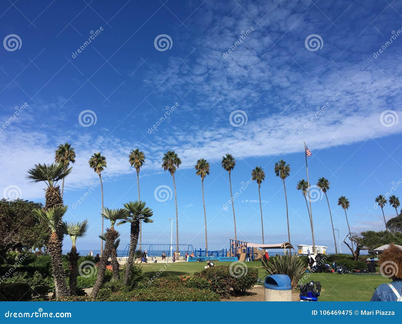Φοίνικες Καλιφόρνια