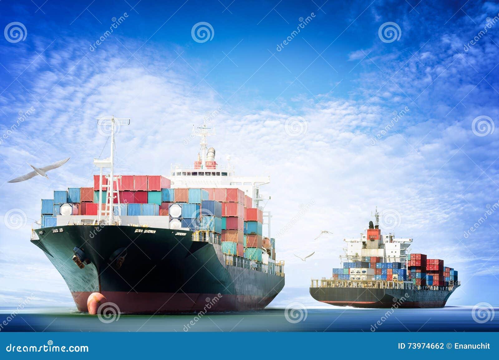 Φορτηγό πλοίο εμπορευματοκιβωτίων στον ωκεανό με τα πουλιά που πετούν στο μπλε ουρανό,