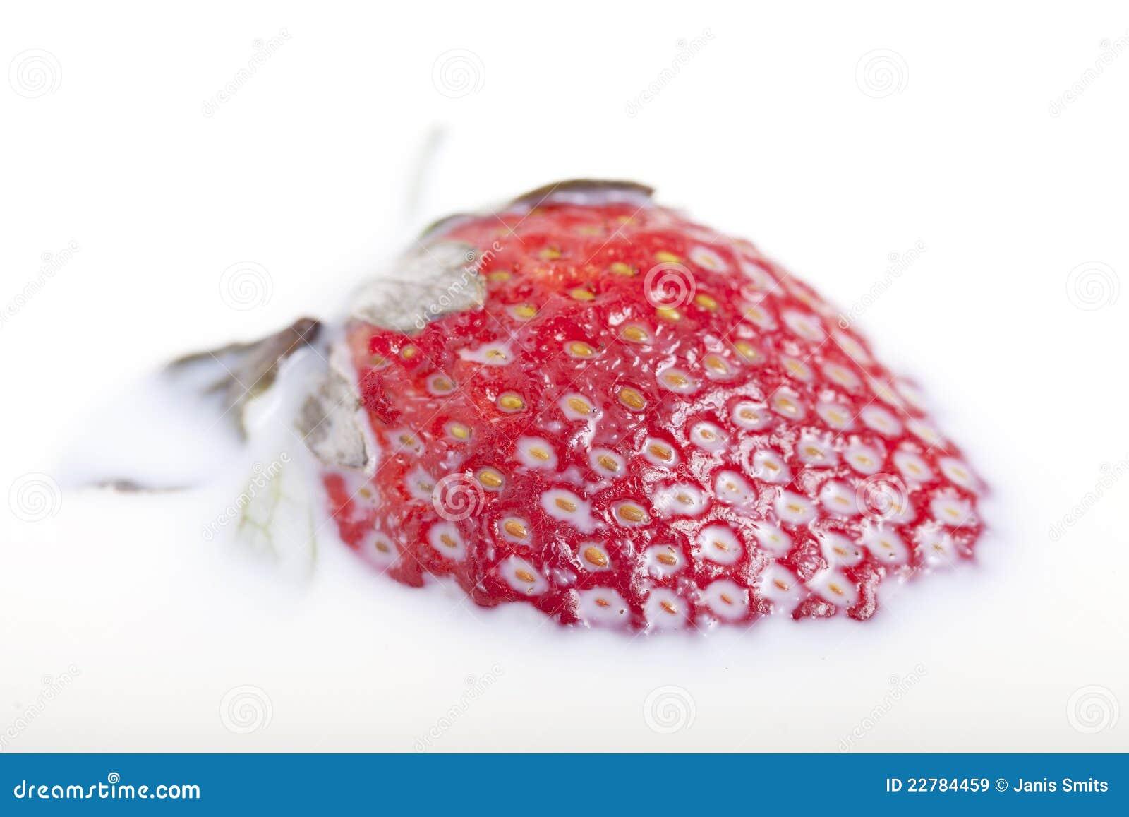 φράουλα γάλακτος