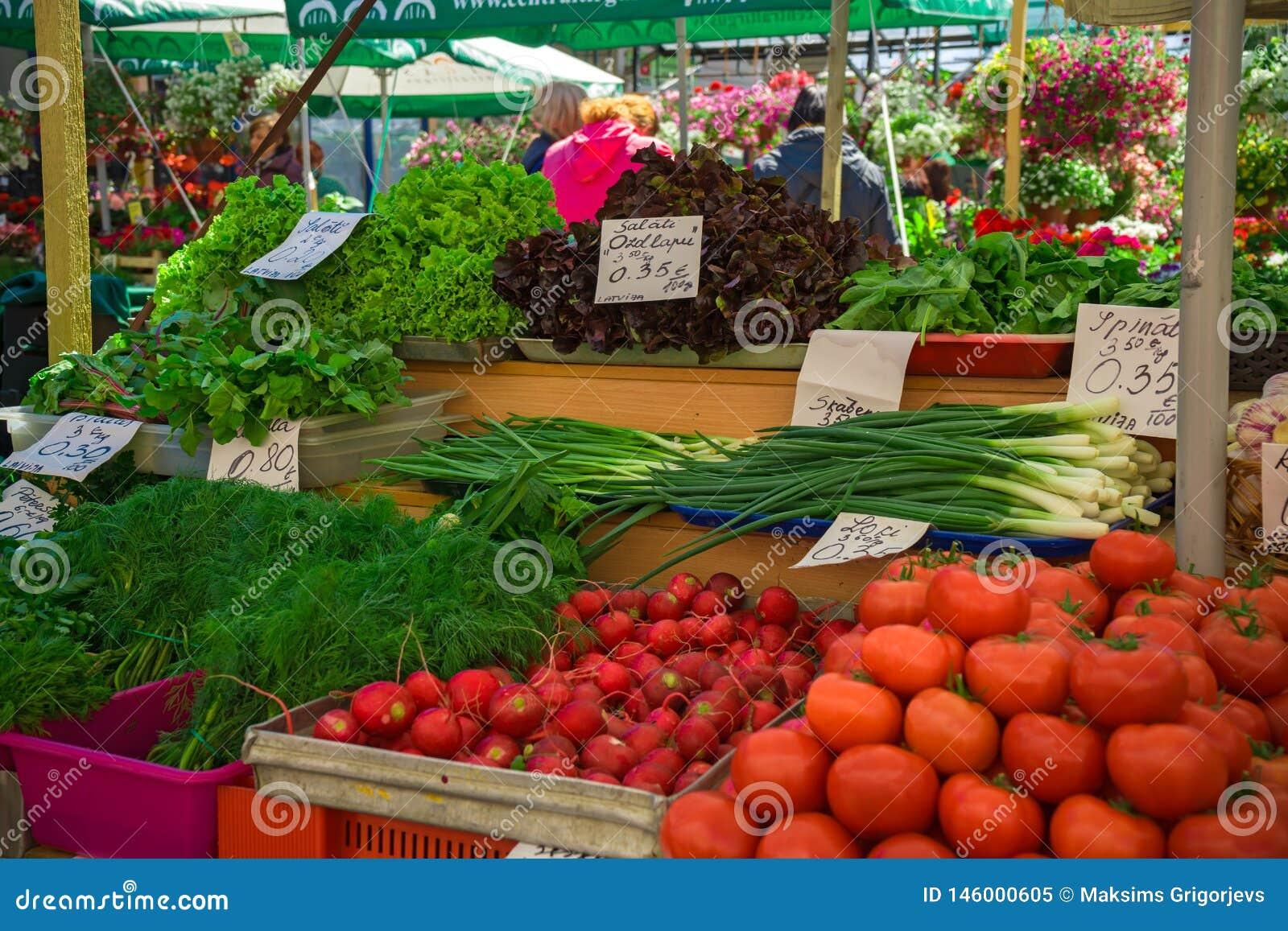 Φρέσκα και οργανικά λαχανικά στην αγορά αγροτών: raddish, ντομάτες, άνηθος, σαλάτα, πράσινα onoins, μαρούλι, sorrel στις ετικέτες