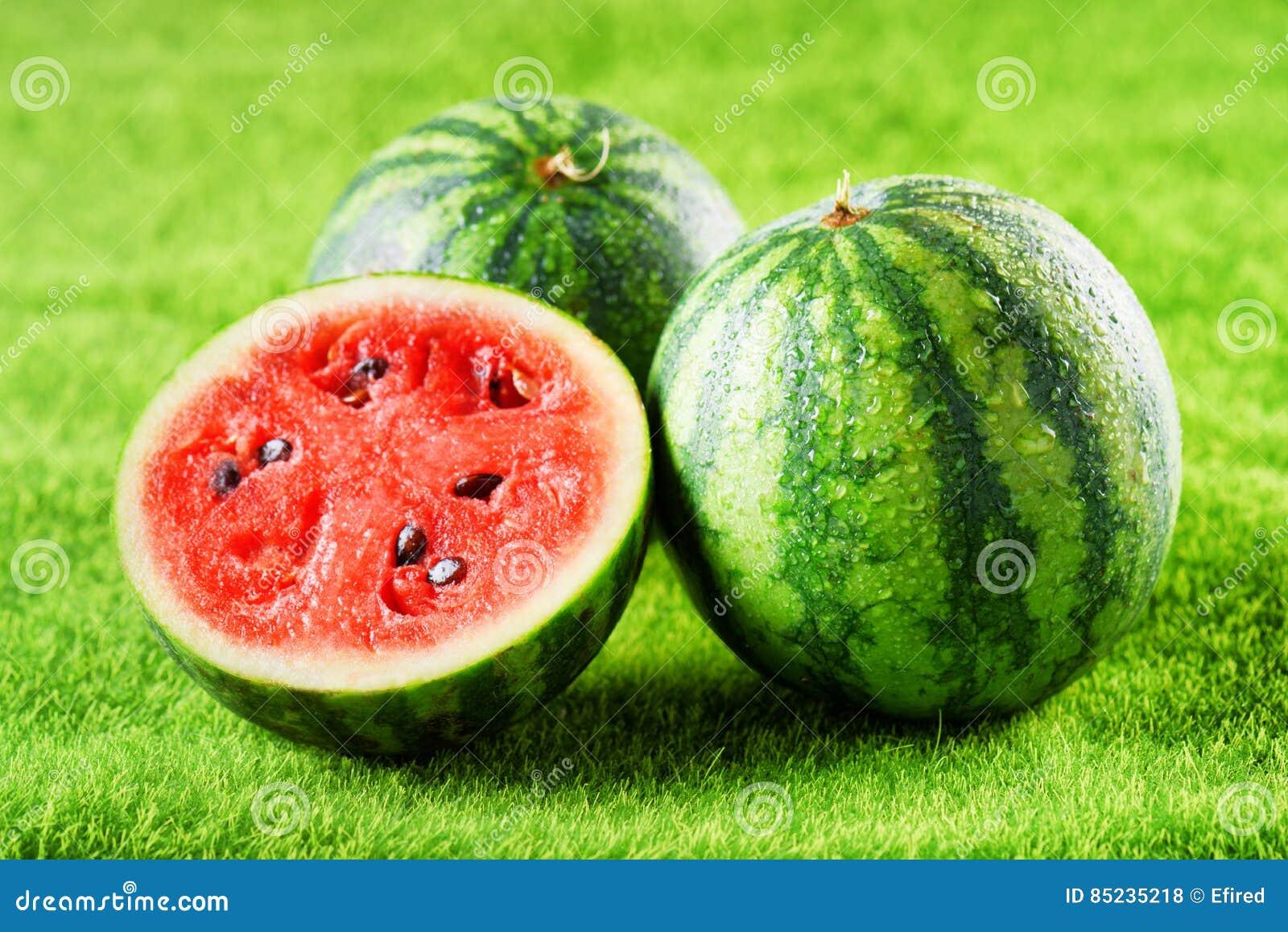 Φρέσκα ώριμα juicy υγρά καρπούζια στην πράσινη χλόη Τρόφιμα Eco