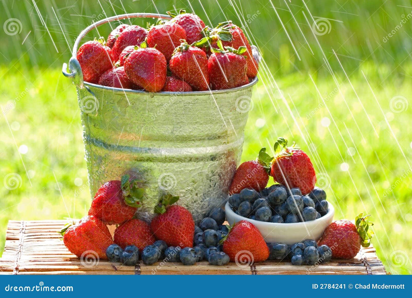 φρέσκες φράουλες βροχή&sigma