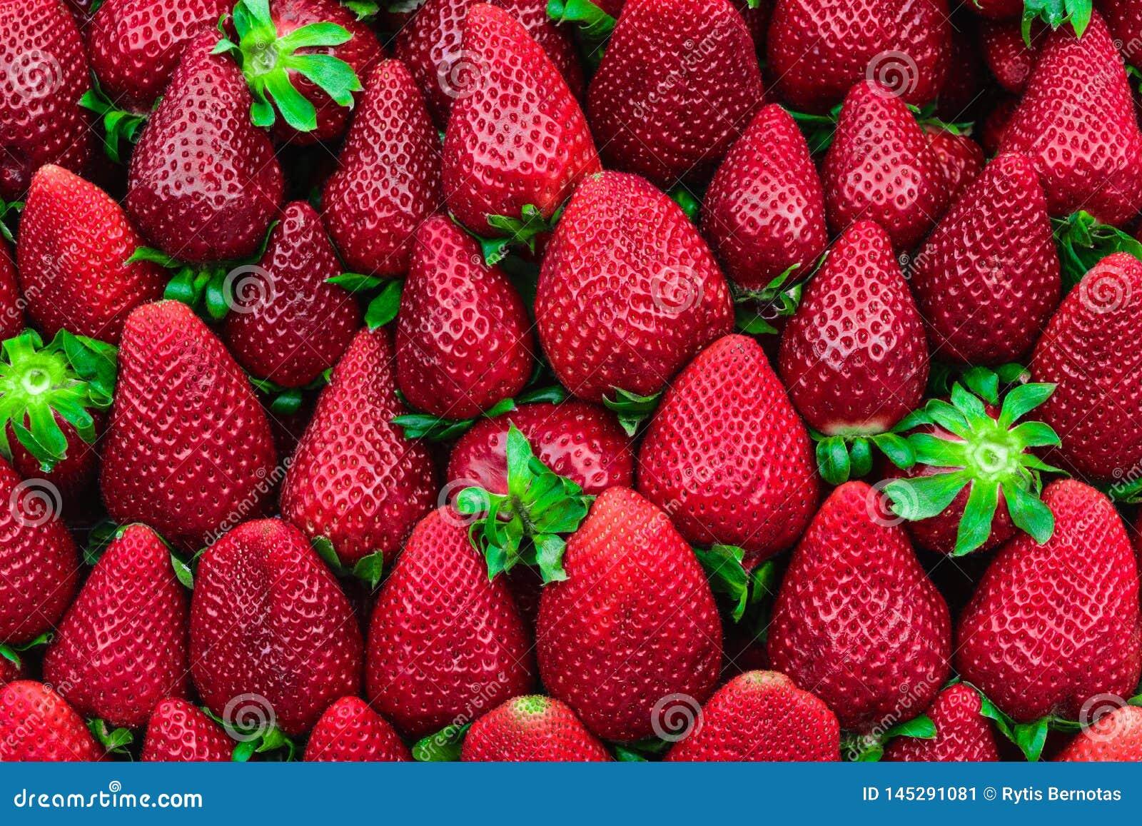 Υπόβαθρο φραουλών