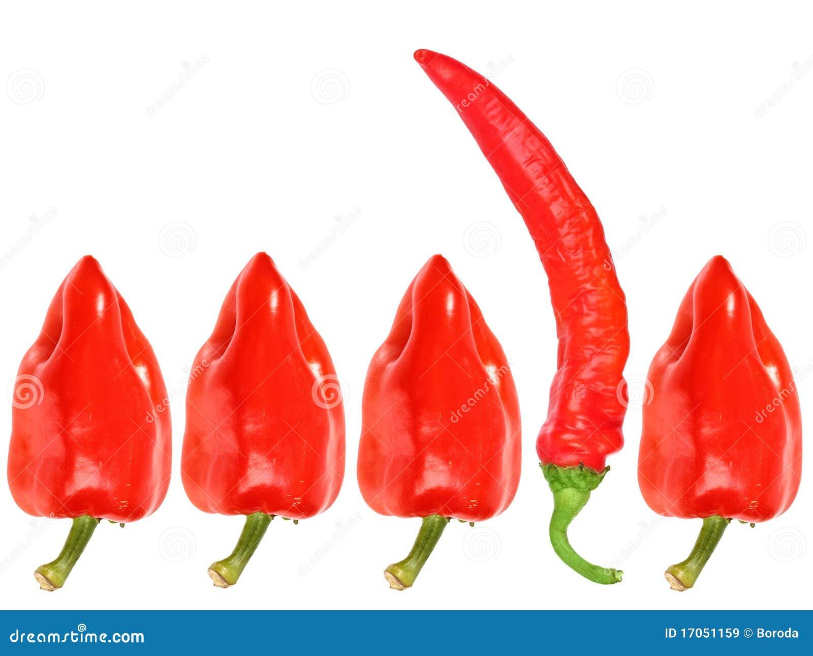φρέσκο κόκκινο πιπεριών ομ
