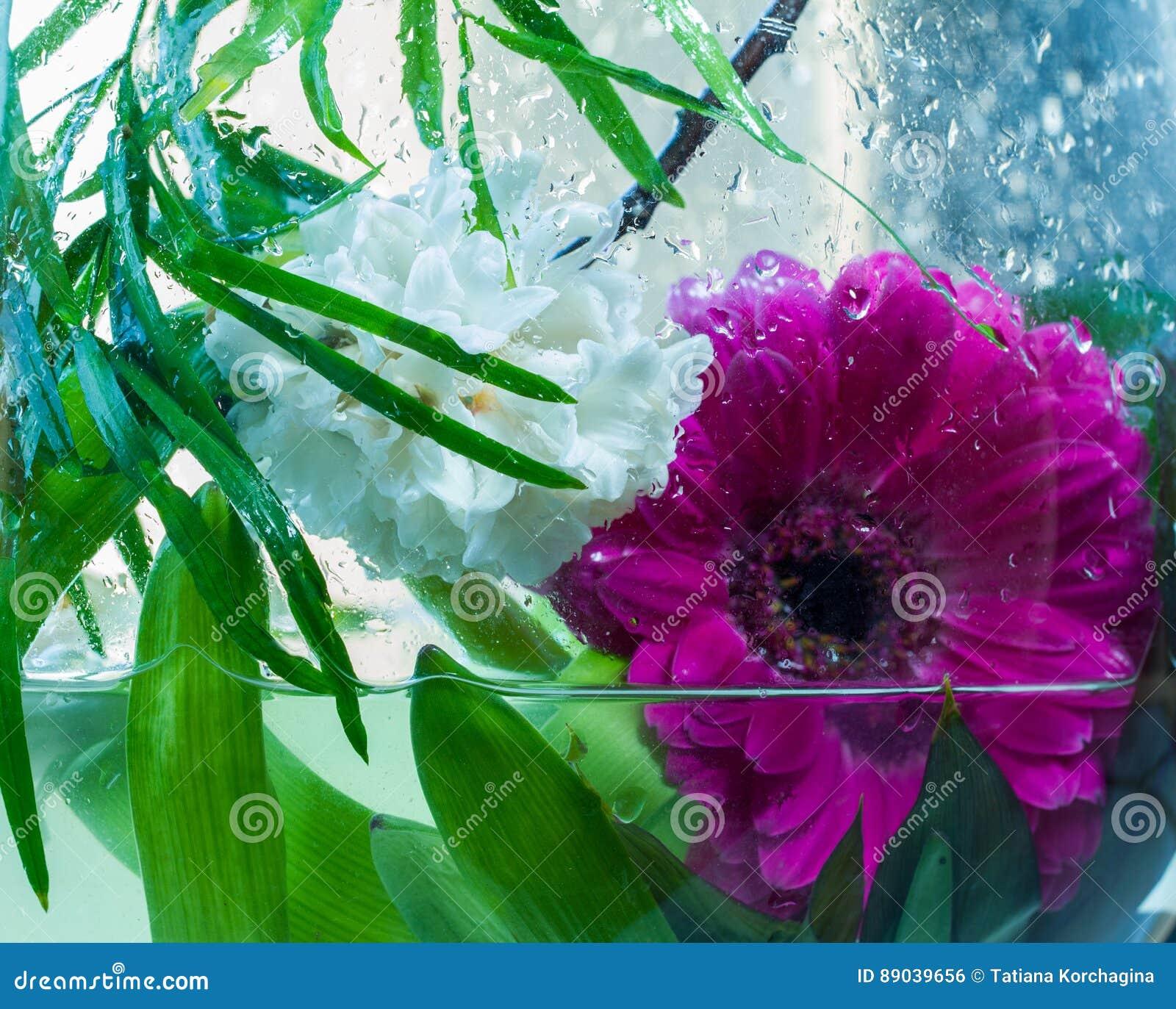 Φρεσκάδα, λουλούδια της άνοιξη