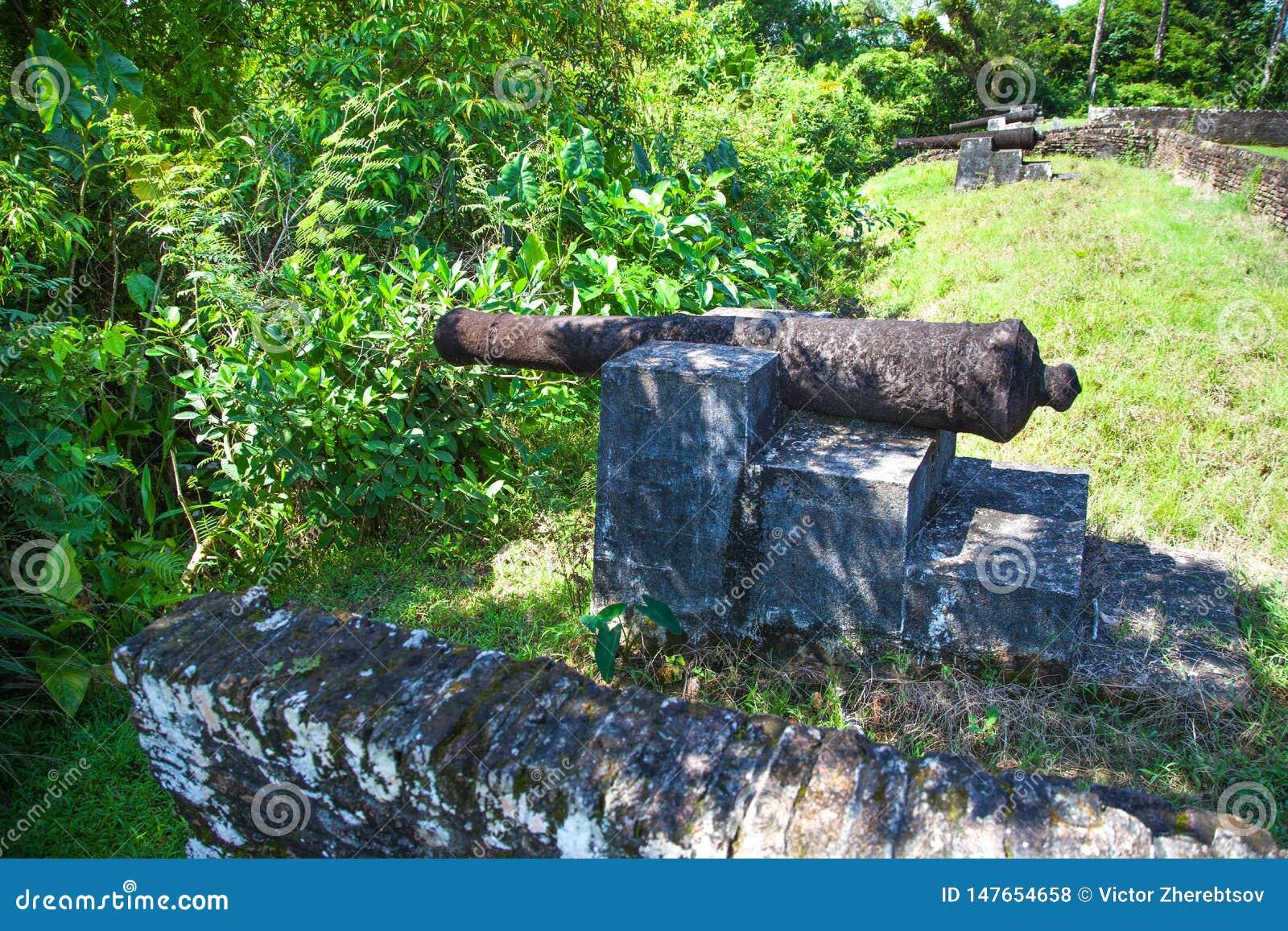 Φρούριο Πυροβόλα όπλα του οχυρού Zeelandia, Γουιάνα Το οχυρό Ζηλανδία βρίσκεται στο νησί του ποταμού Essequibo Το οχυρό χτίστηκε