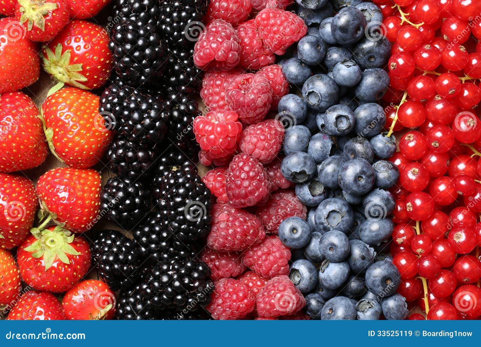 Φρούτα μούρων σε μια σειρά