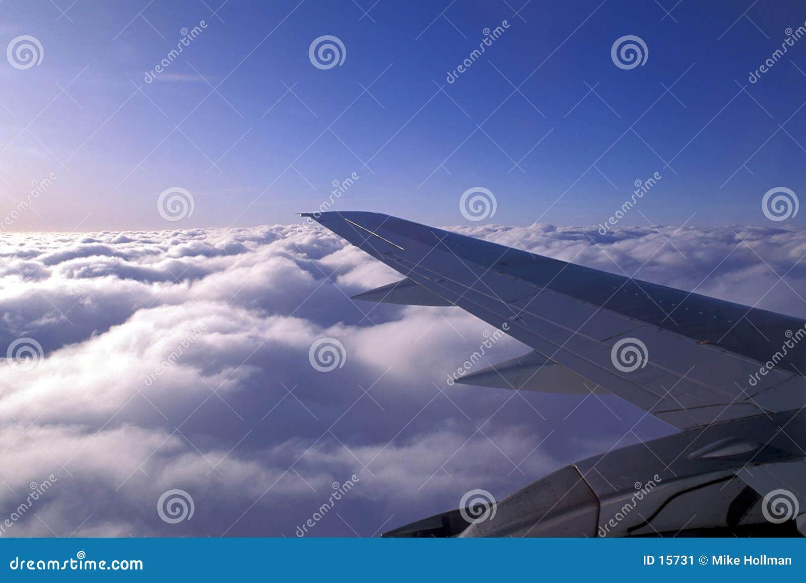 φτερό αεροσκαφών