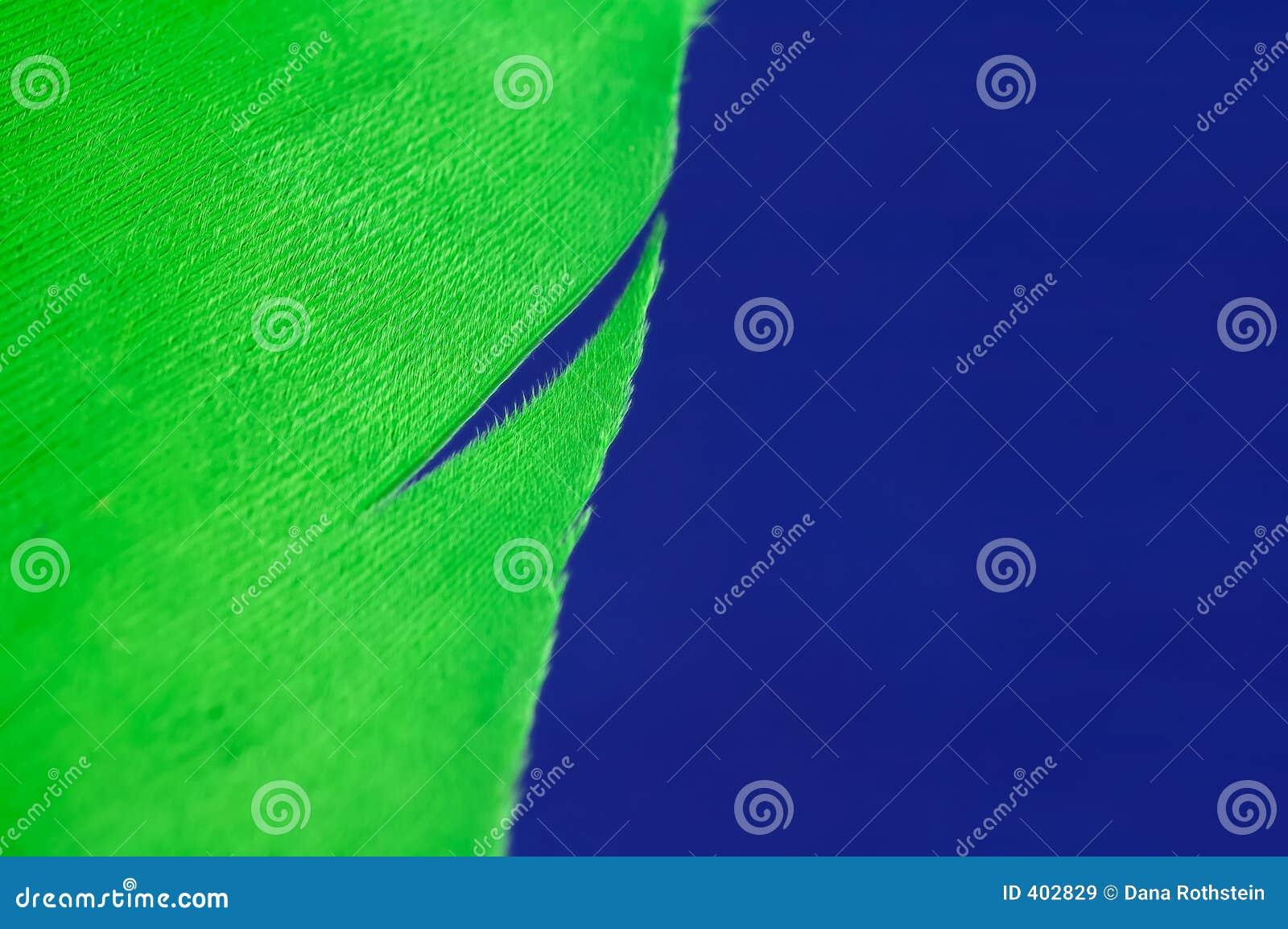 φτερό πράσινο