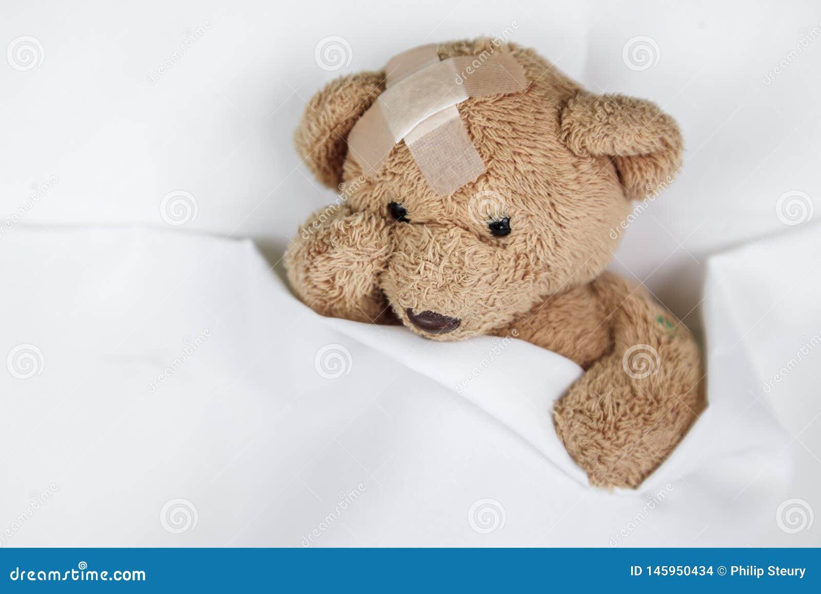 Φτωχό άρρωστο Teddy