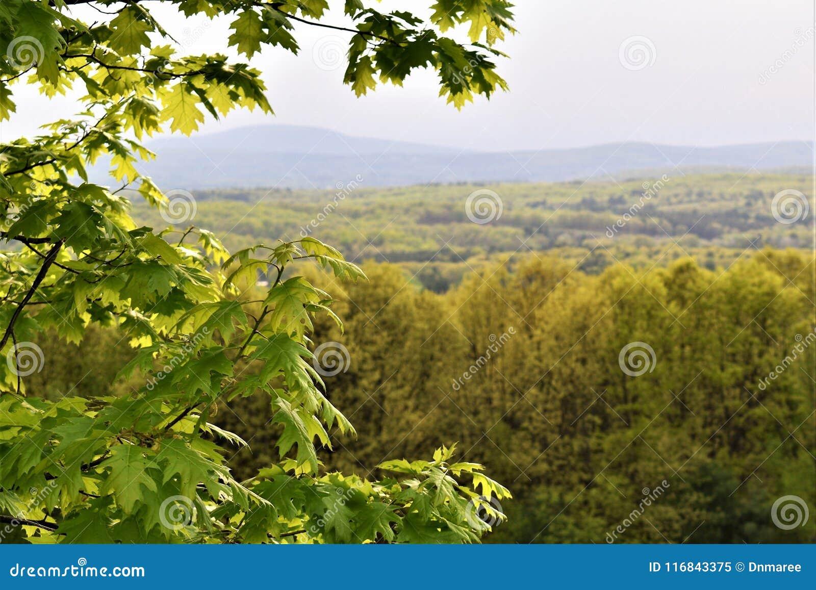 Φυσική άποψη του εθνικού Wildlfe καταφυγίου Oxbow παίρνω από το Χάρβαρντ, Μασαχουσέτη, Ηνωμένες Πολιτείες