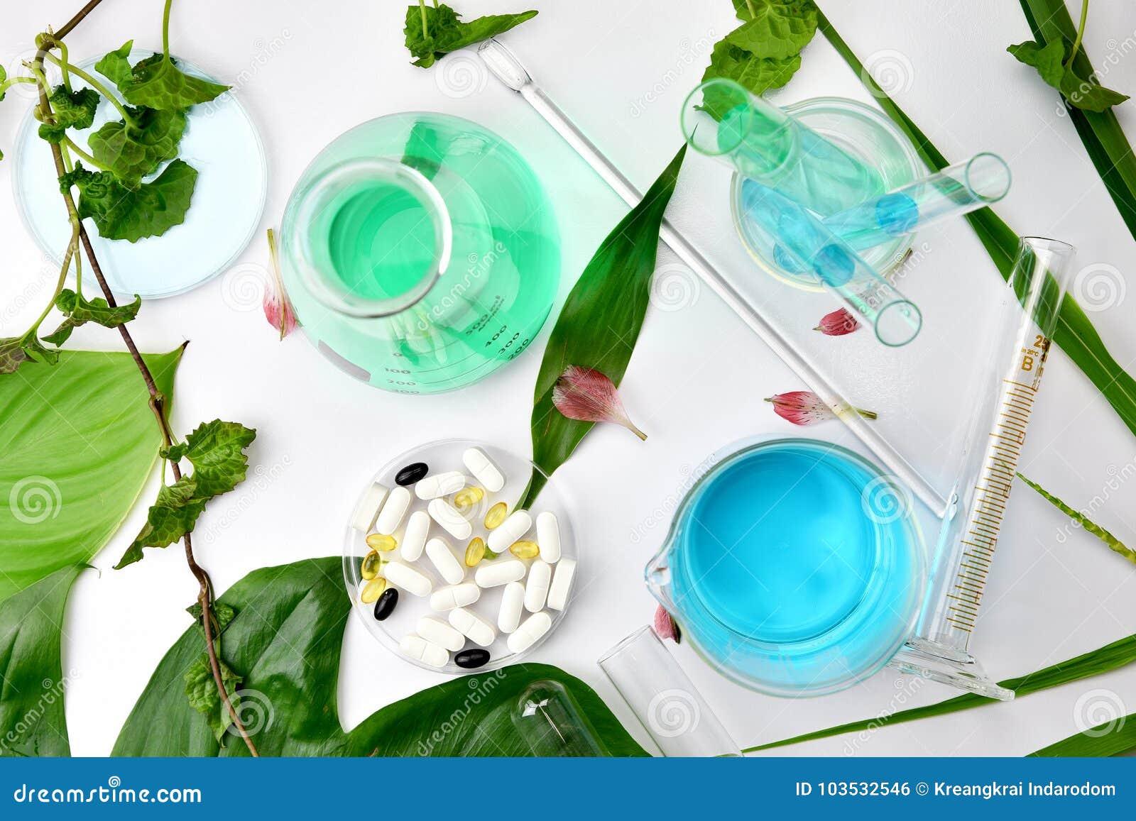 Φυσική οργανική βοτανική και επιστημονικά γυαλικά, εναλλακτική ιατρική χορταριών, φυσικά δέρματος προϊόντα ομορφιάς φροντίδας καλ