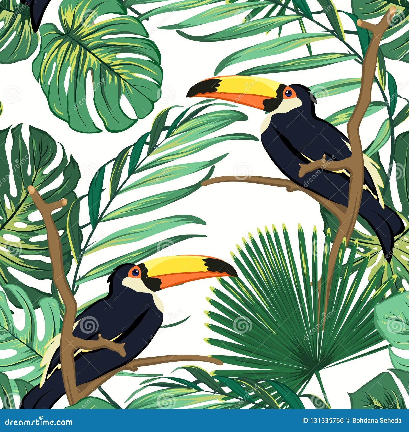 Φυσικός βιότοπος πουλιών Toucan στην εξωτική τροπική πρασινάδα φτερών τροπικών δασών ζουγκλών Ζωηρό βεραμάν άνευ ραφής σχέδιο