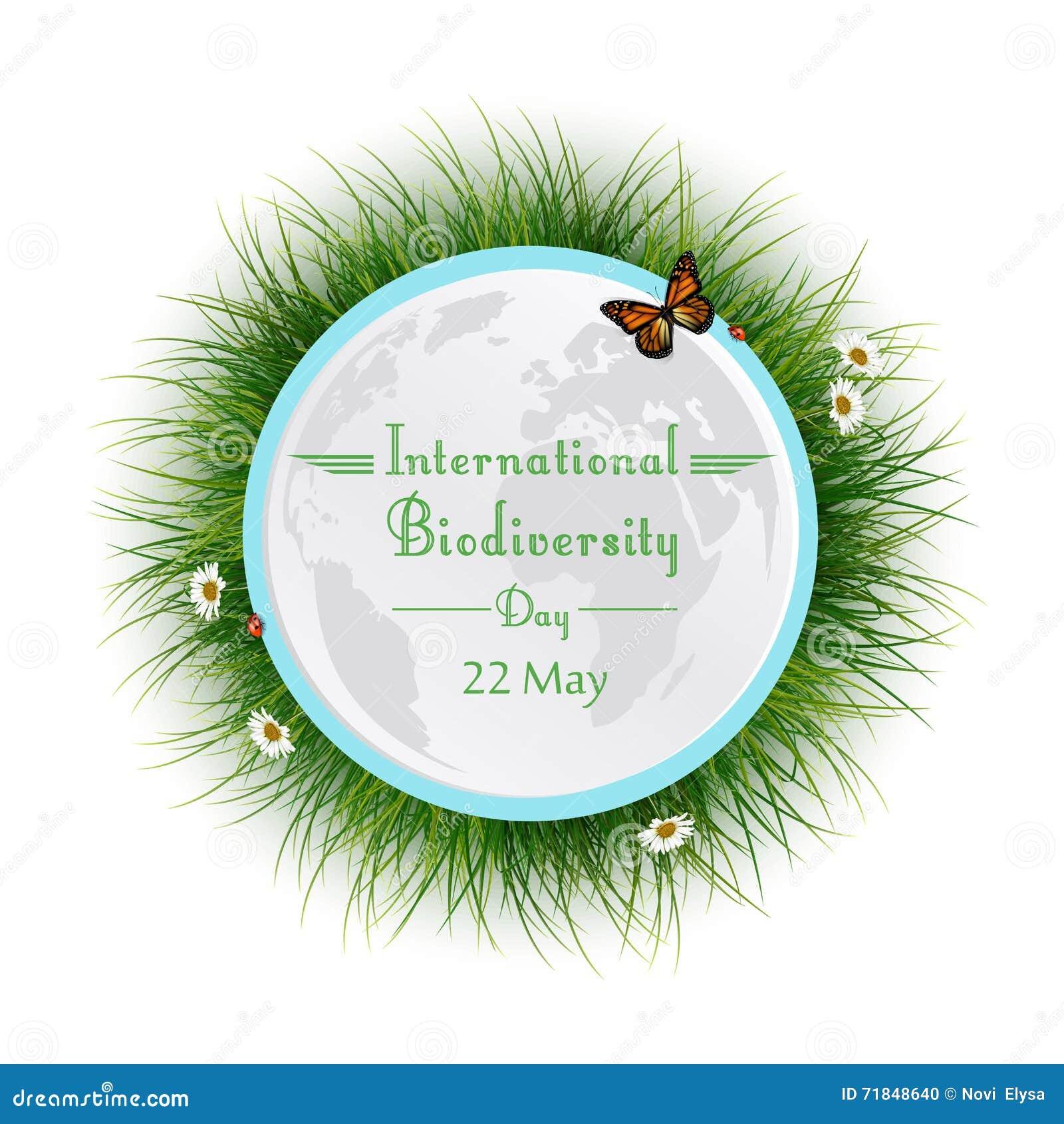 Φυσικό πλαίσιο με τον κύκλο χλόης για τη διεθνή ημέρα βιοποικιλότητας