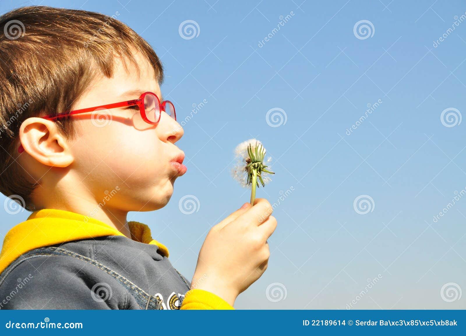 φυσώντας κατσίκι πικραλίδων