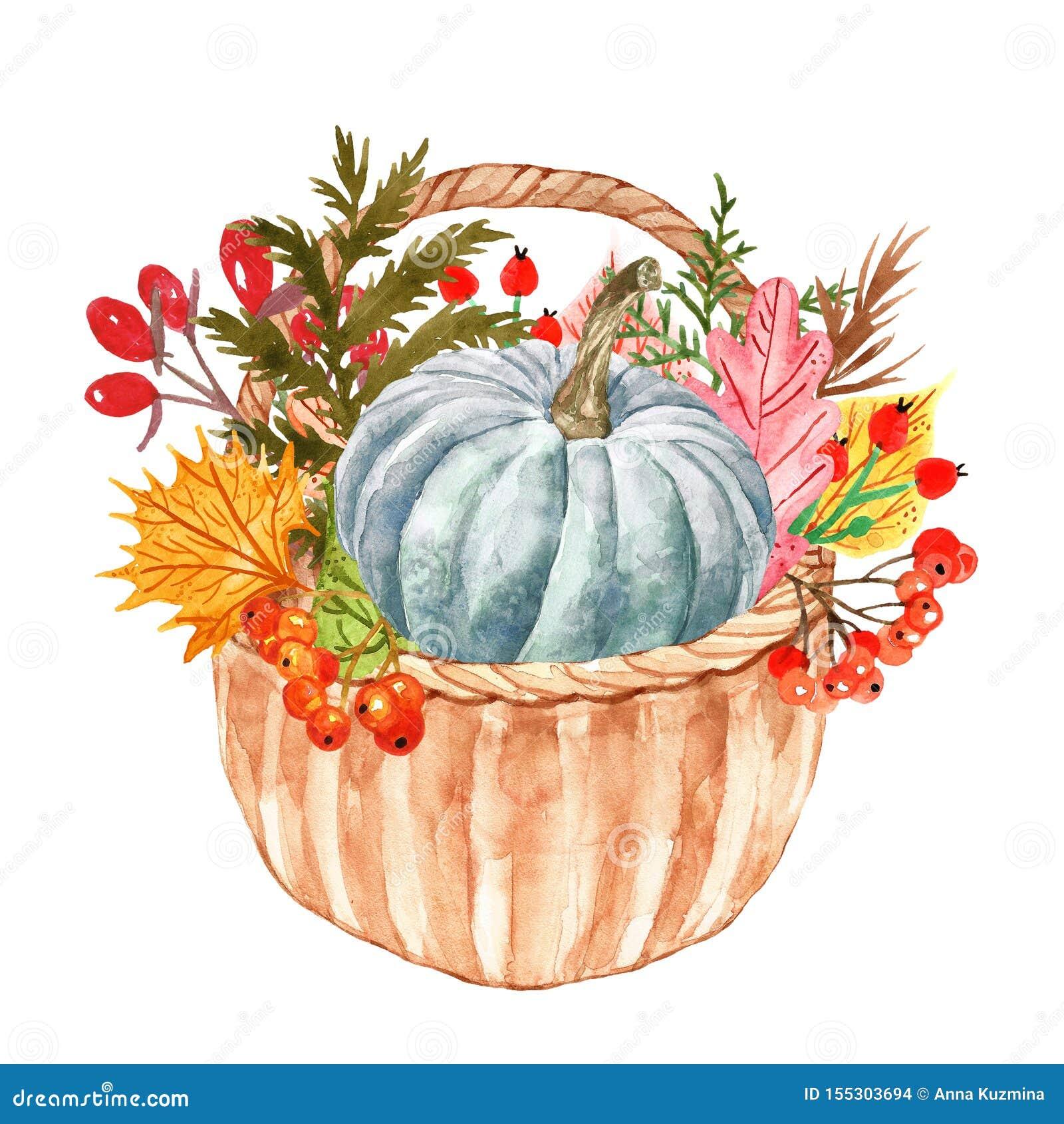 Φυτά και φύλλα φθινοπώρου Watercolor στο καλάθι Ζωηρόχρωμο πορτοκαλί, κίτρινο και κόκκινο φύλλο δασικών δέντρων με τα κόκκινα μού