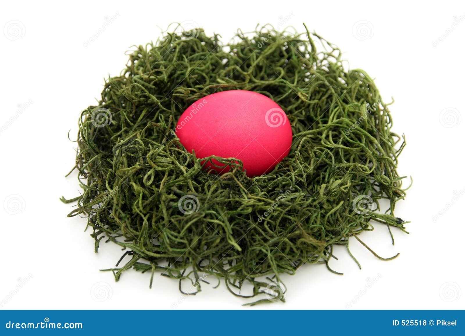 φωλιά αυγών