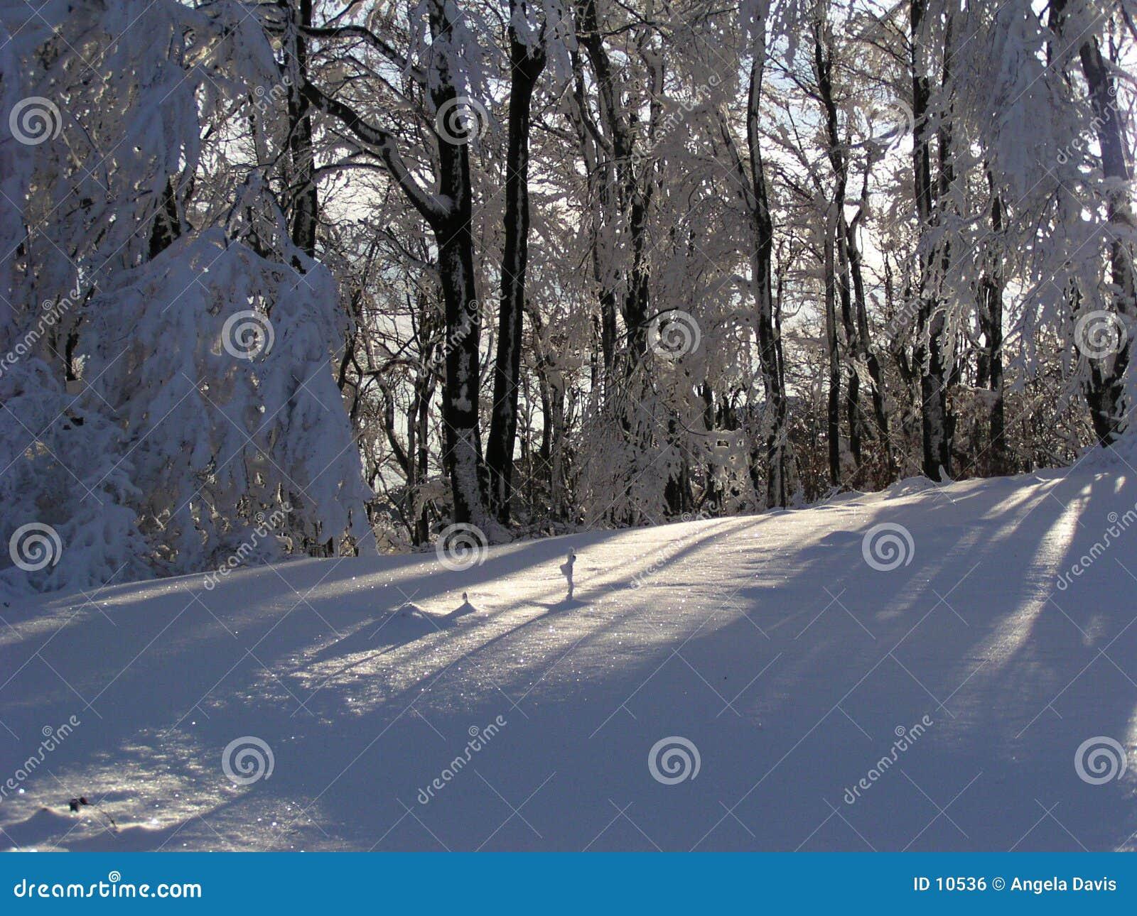 φως του ήλιου χιονιού τ&eta