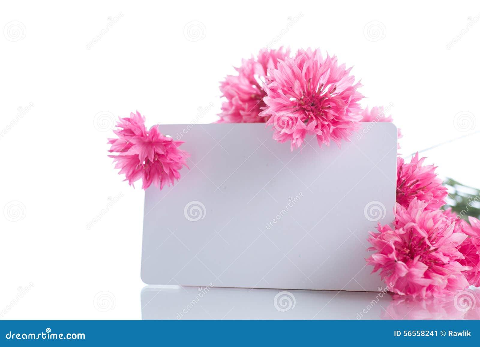 Download Φωτεινή ανθοδέσμη των γαρίφαλων Στοκ Εικόνα - εικόνα από αγάπη, ανασκόπησης: 56558241