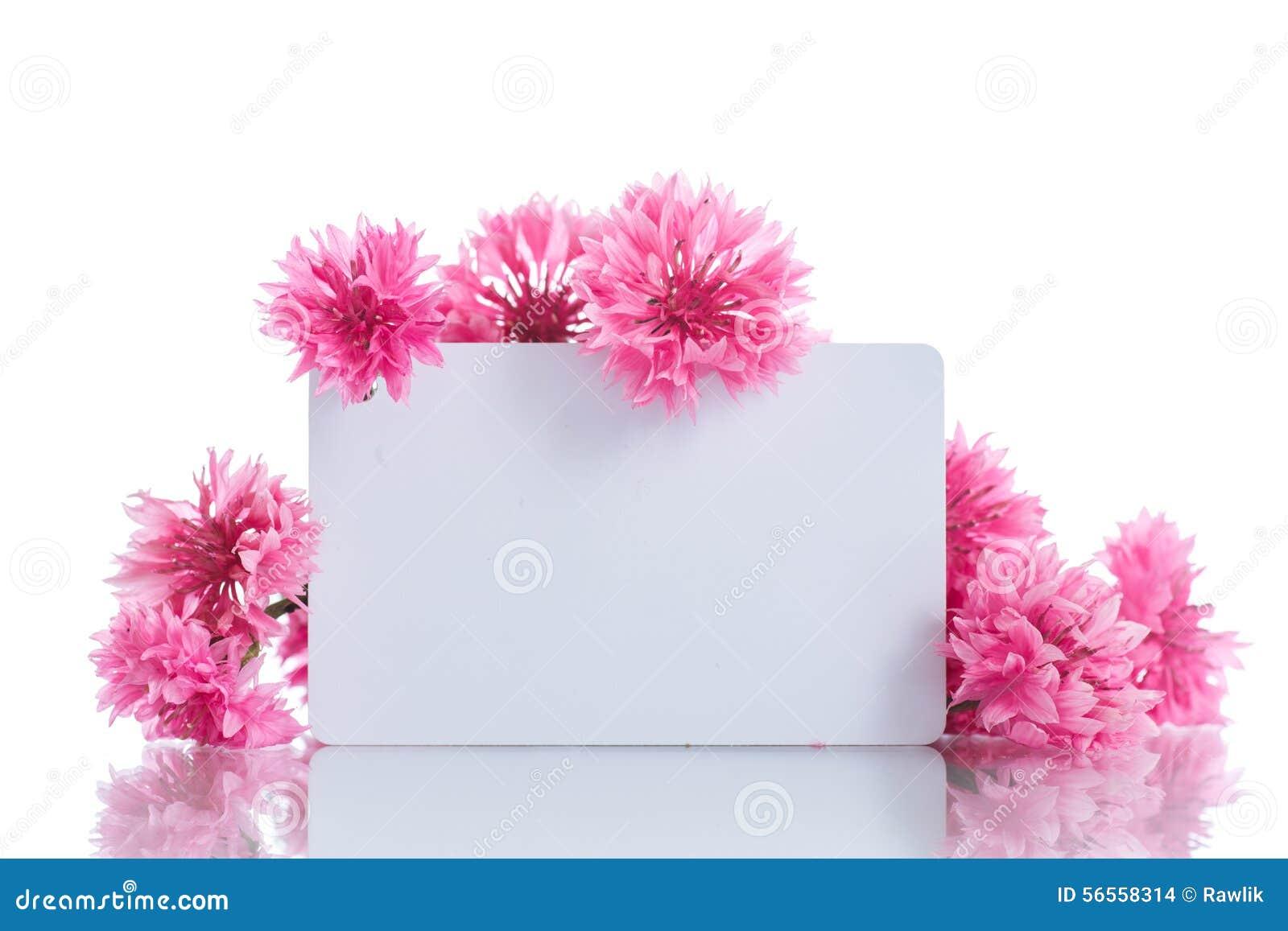 Download Φωτεινή ανθοδέσμη των γαρίφαλων Στοκ Εικόνες - εικόνα από λουλούδι, απομονωμένος: 56558314