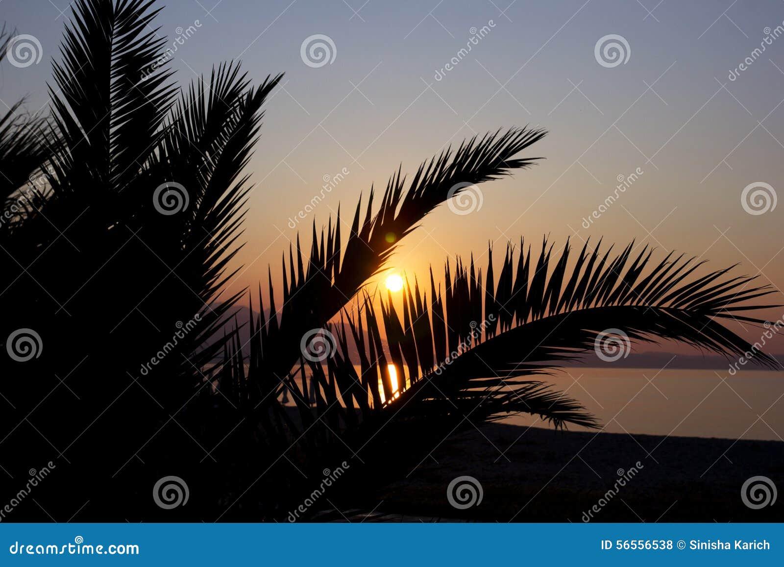 Download Φωτογραφία που λαμβάνεται στο μεσογειακό νησί Κορσική Στοκ Εικόνες - εικόνα από φύση, φως: 56556538