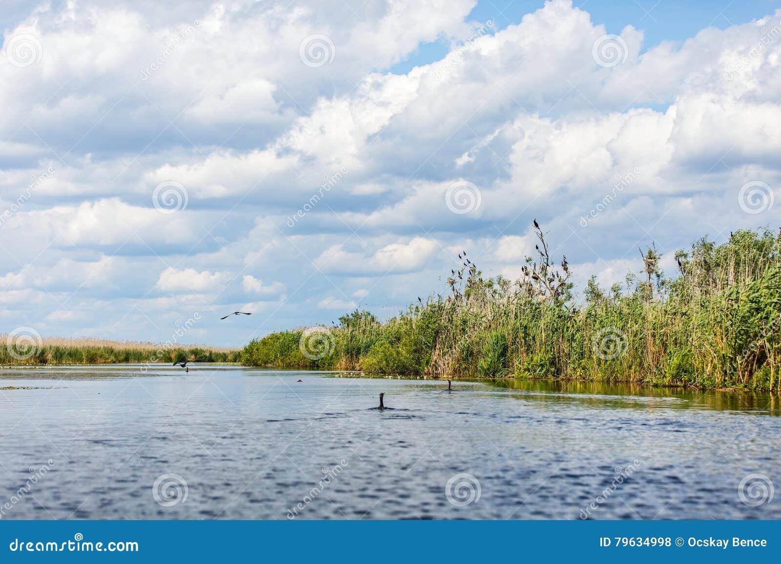 Φωτογραφία τοπίων του δέλτα Δούναβη