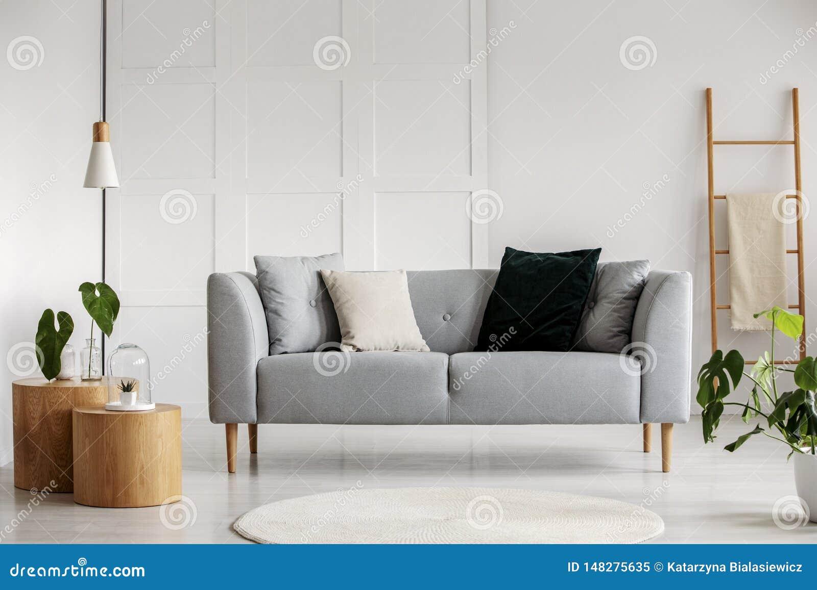 Φωτογραφία του σύγχρονου καθιστικού με τον γκρίζο καναπέ
