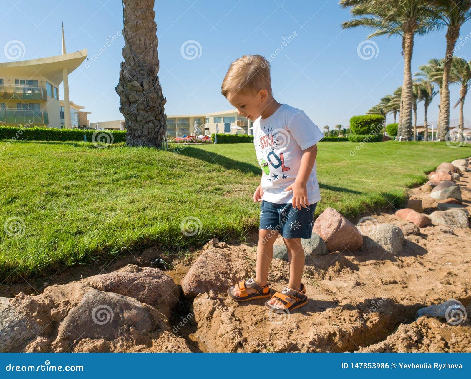 Φωτογραφία του χαριτωμένου περπατήματος αγοριών μικρών παιδιών στη θάλασσα με κάτω από τους φοίνικες ανάπτυξης και τον όμορφο πρά