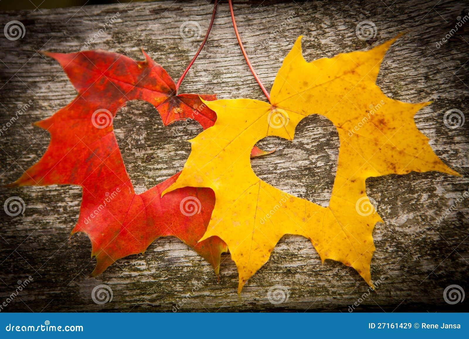 Φύλλα φθινοπώρου και καρδιές αγάπης