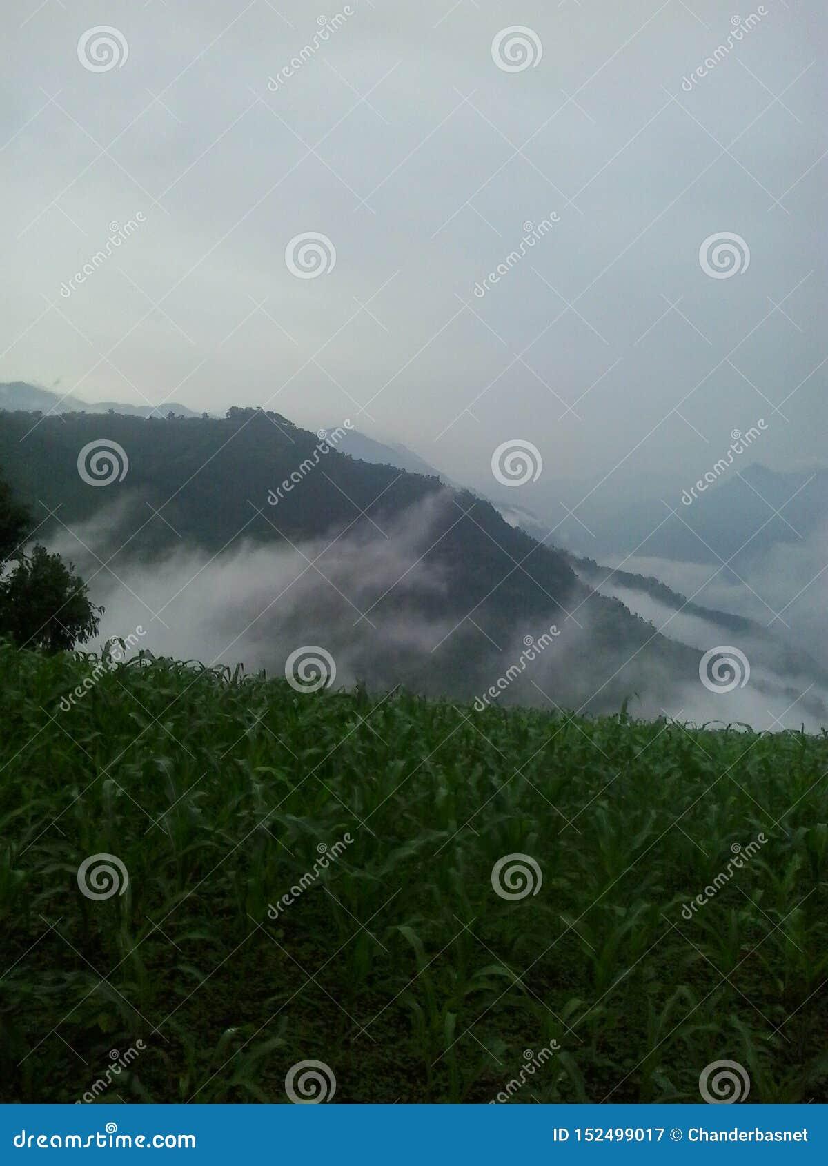 Φύση βουνών πρωινού στη γη
