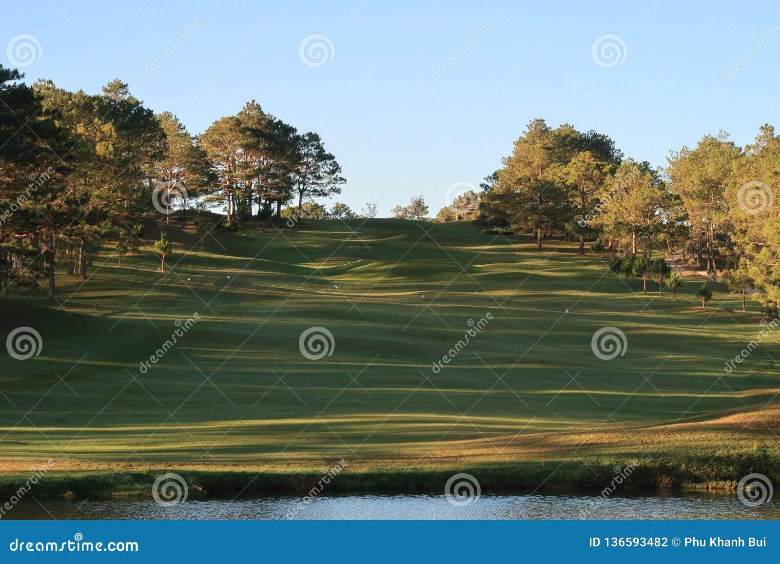 Φύση με τα μαγικά sunrays, την ηλιοφάνεια, την ελαφριά και πράσινη χλόη, λιβάδι Χρήση φωτογραφιών στο σχέδιο ιδέας για το γκολφ,