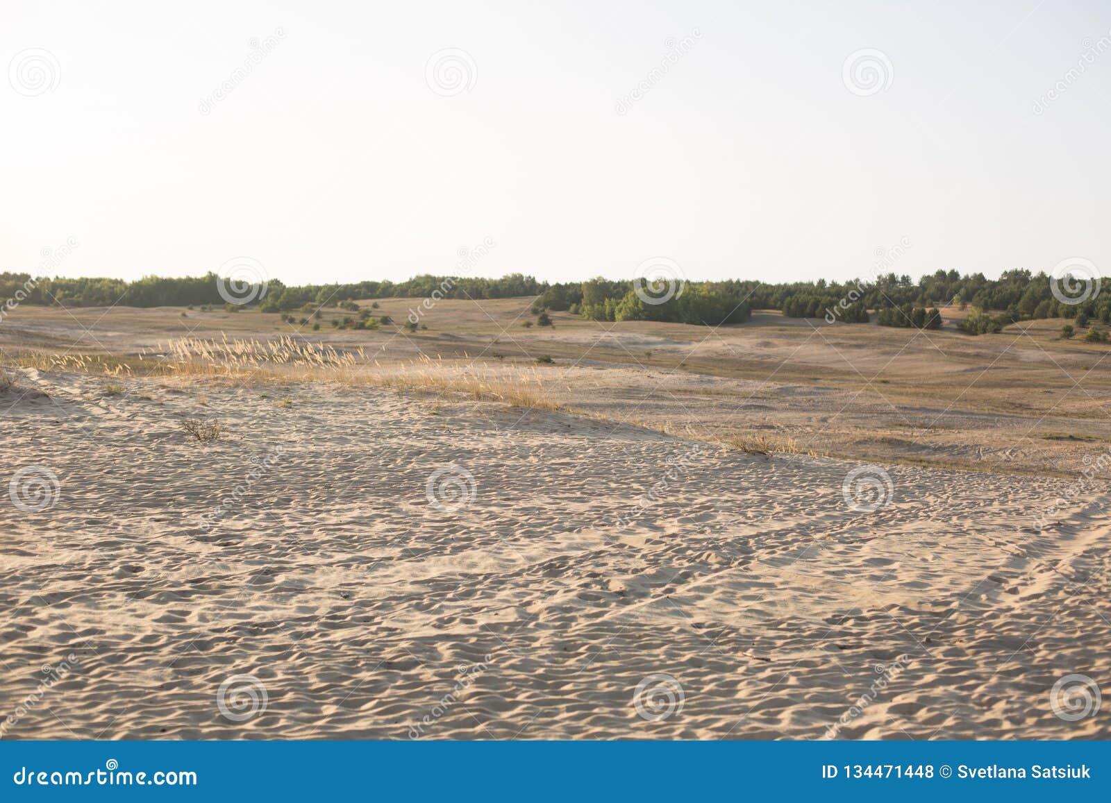 Φύση στέπα Άμμος τοπίο περιοχής συντήρησης