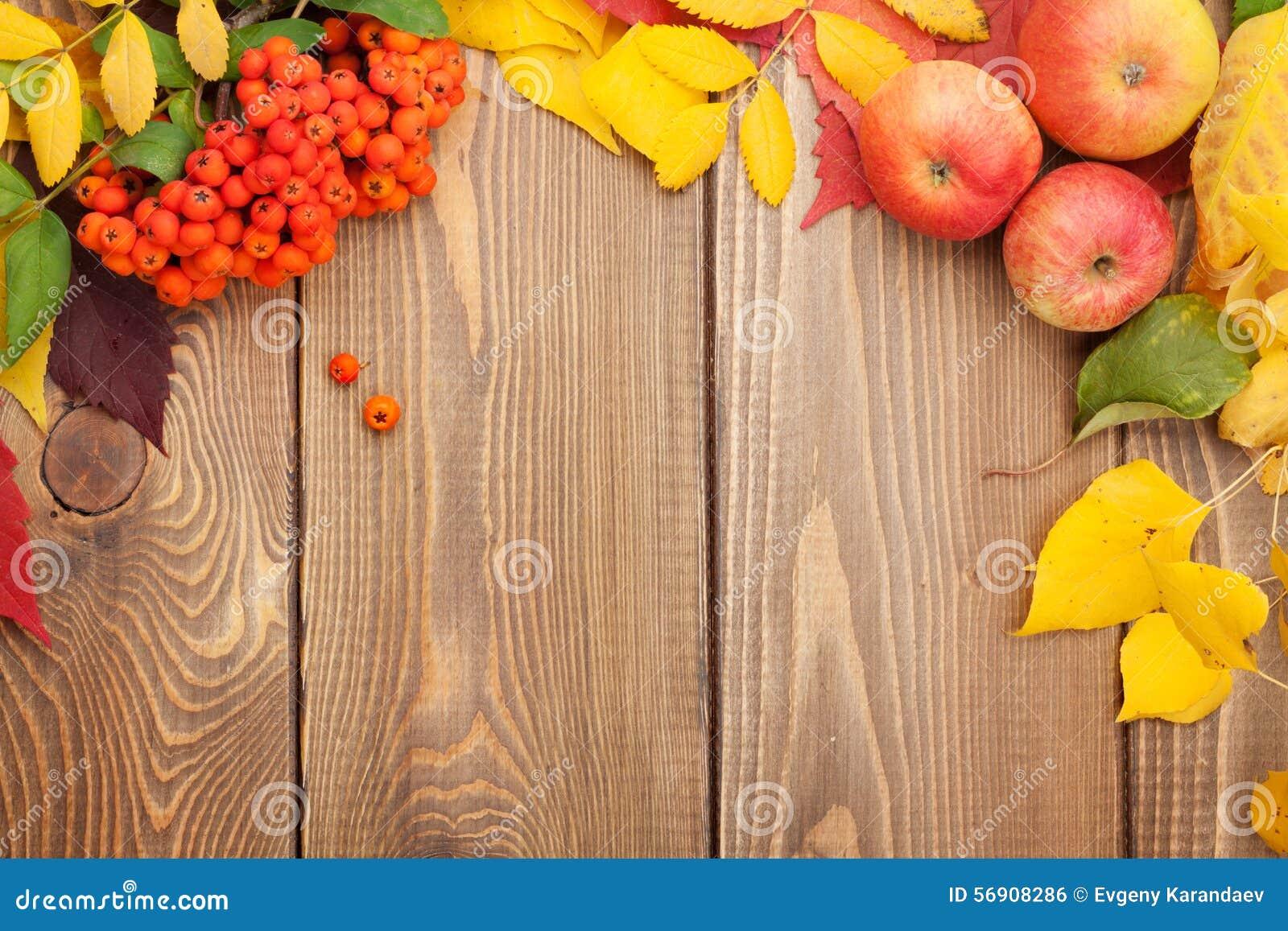 Φύλλα φθινοπώρου, μούρα σορβιών και μήλα πέρα από το ξύλινο υπόβαθρο