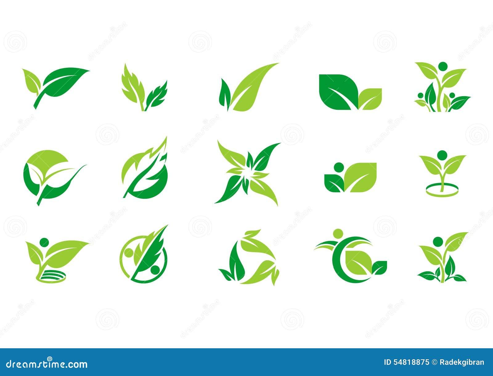 Φύλλο, φυτό, λογότυπο, οικολογία, άνθρωποι, wellness, πράσινο, φύλλα, σύνολο εικονιδίων συμβόλων φύσης των διανυσματικών σχεδίων