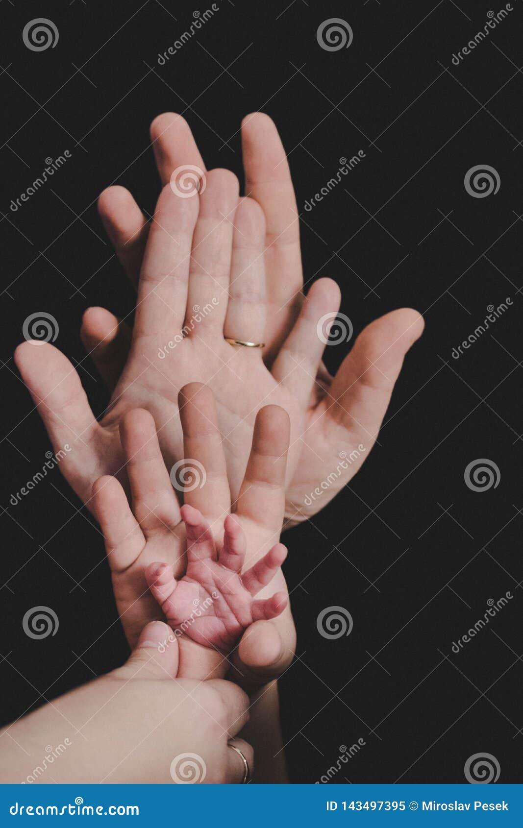 Χέρια ολόκληρης της οικογένειας Πατέρας, μητέρα, γιος και ένα μωρό Φιλική ευτυχής οικογένεια