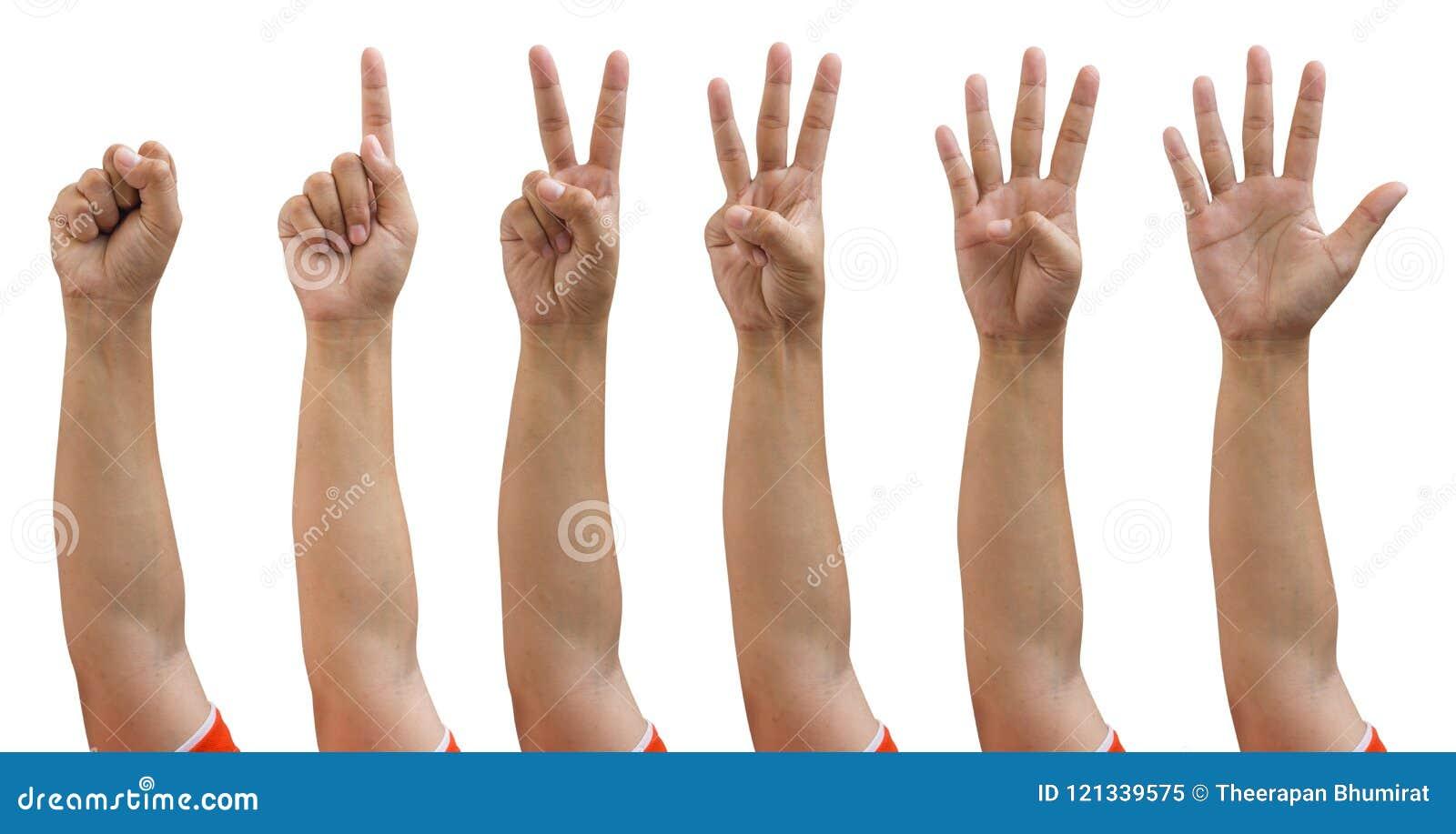 Χέρια που απομονώνονται θηλυκά ψαλιδίζοντας το χέρι πορειών που μετρά μηδέν έως πέντε