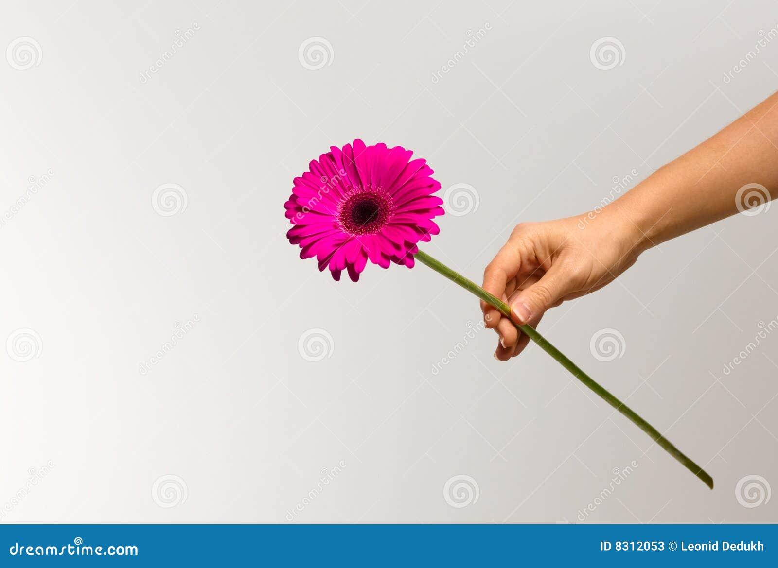 χέρι λουλουδιών