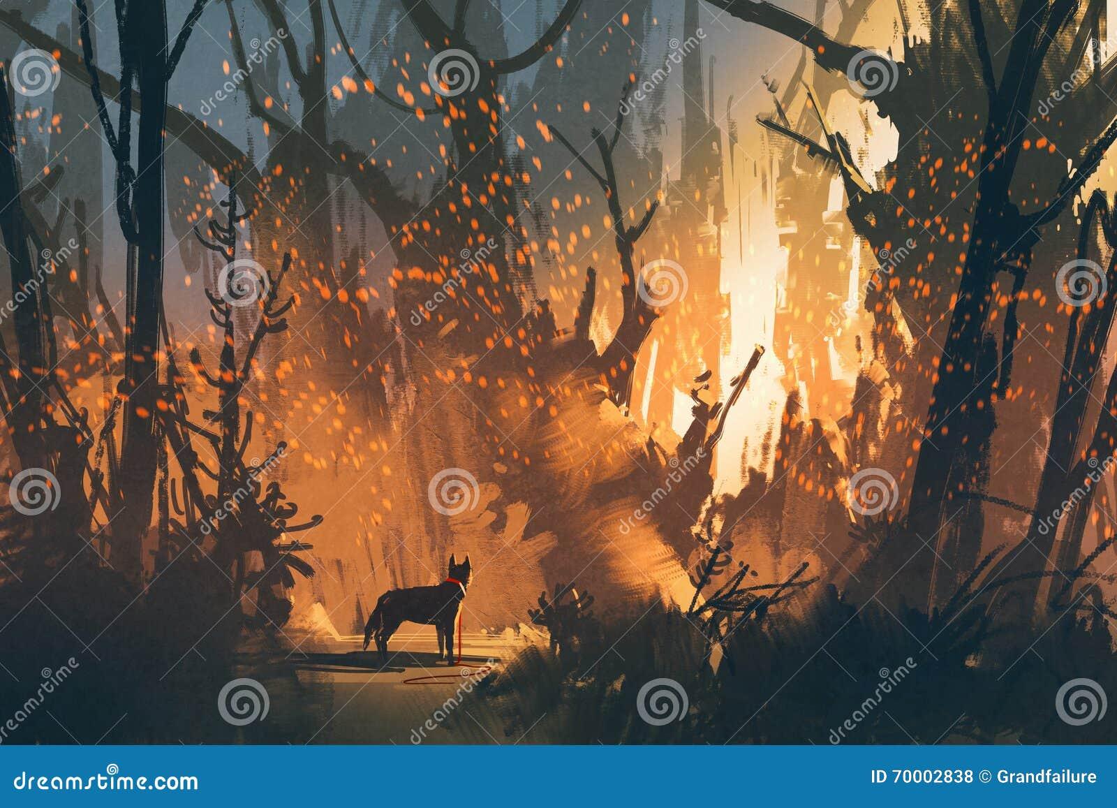 Χαμένο σκυλί στο δάσος με το απόκρυφο φως