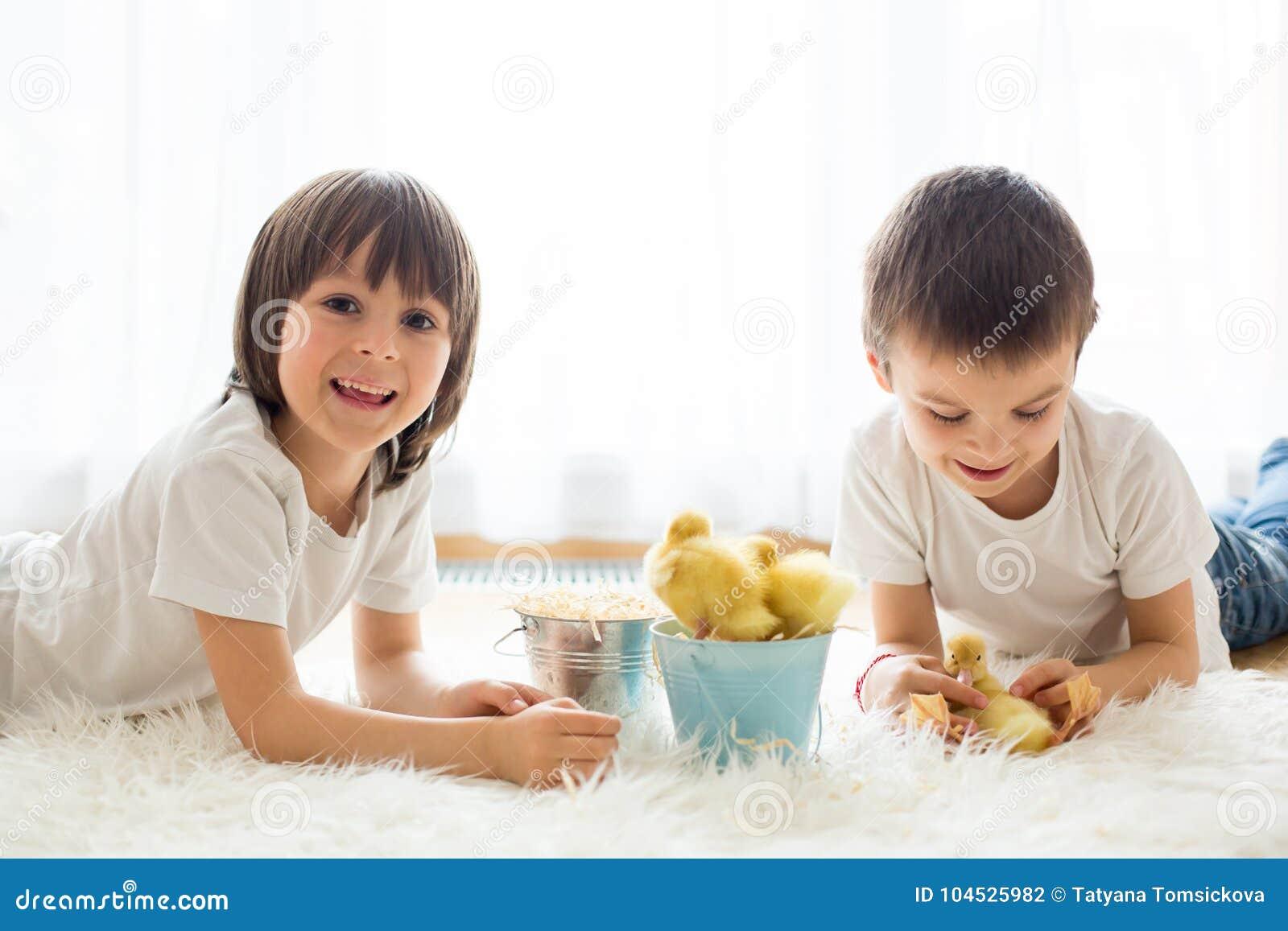 Χαριτωμένα μικρά παιδιά, αδελφοί αγοριών, που παίζουν με το sprin νεοσσών