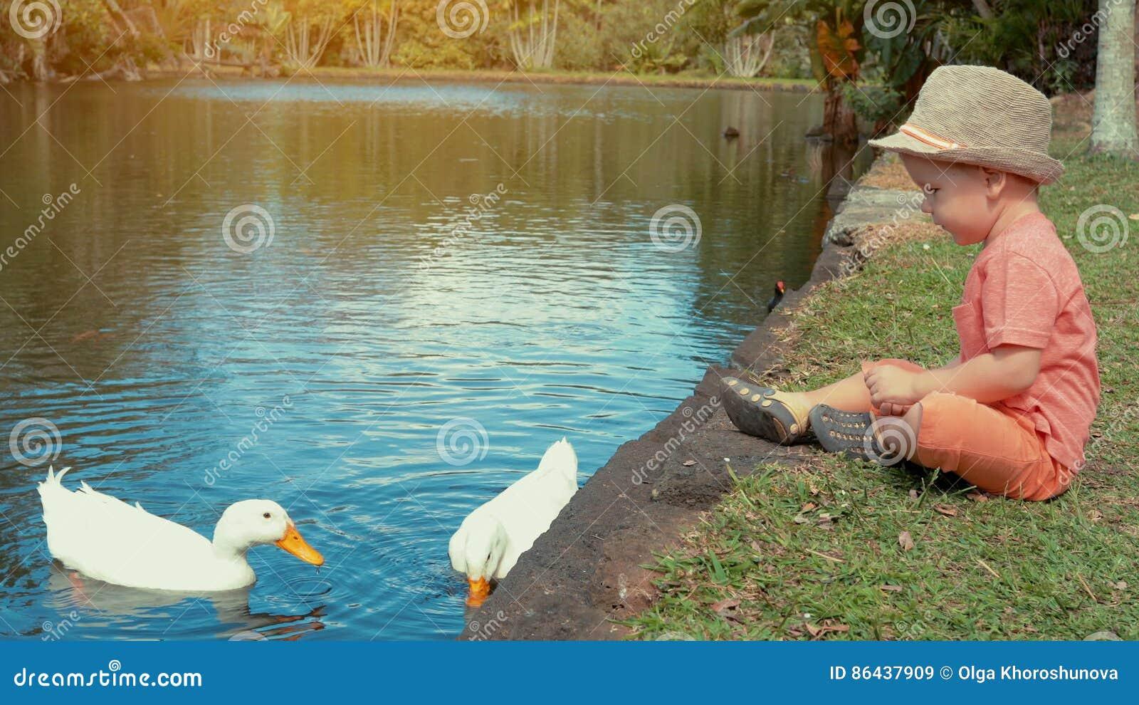 Milf αλιεύονται βλέποντας πορνό