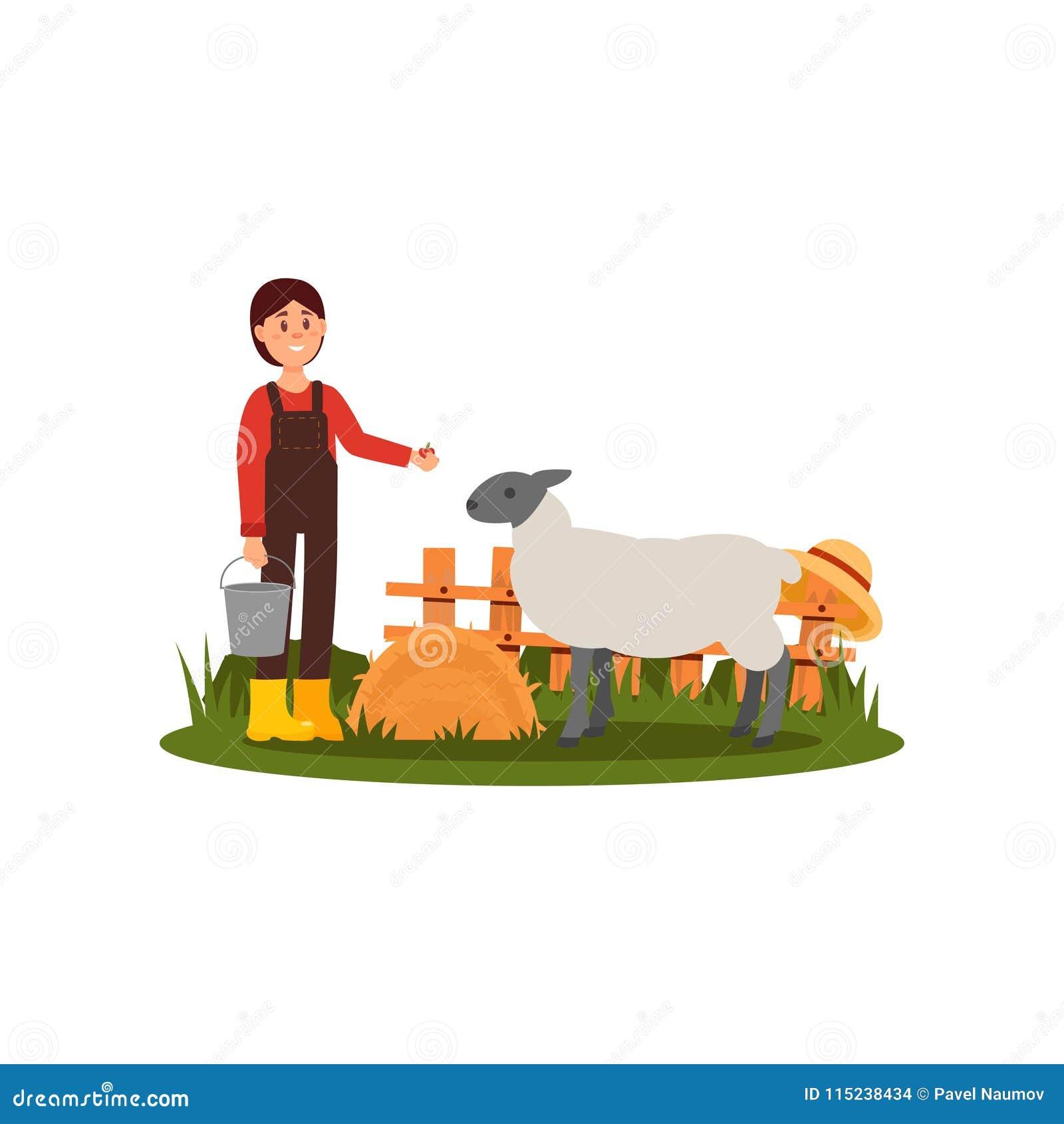 Χαριτωμένα ταΐζοντας πρόβατα νέων κοριτσιών στην αυλή Γυναίκα της Farmer στο πουκάμισο, συνολικά και τις λαστιχένιες μπότες Ξύλιν