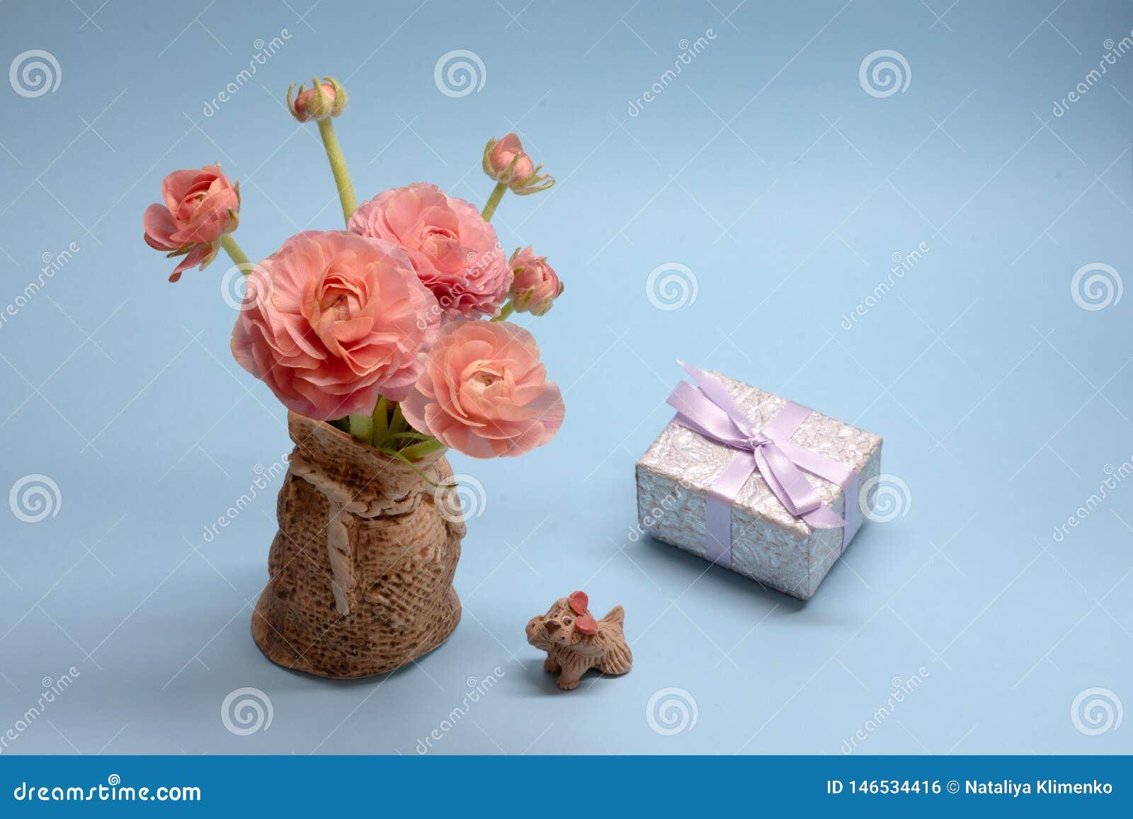 Χαριτωμένη ανθοδέσμη των τρυφερών ρόδινων νεραγκουλών και ένα δώρο σε ένα μπλε υπόβαθρο